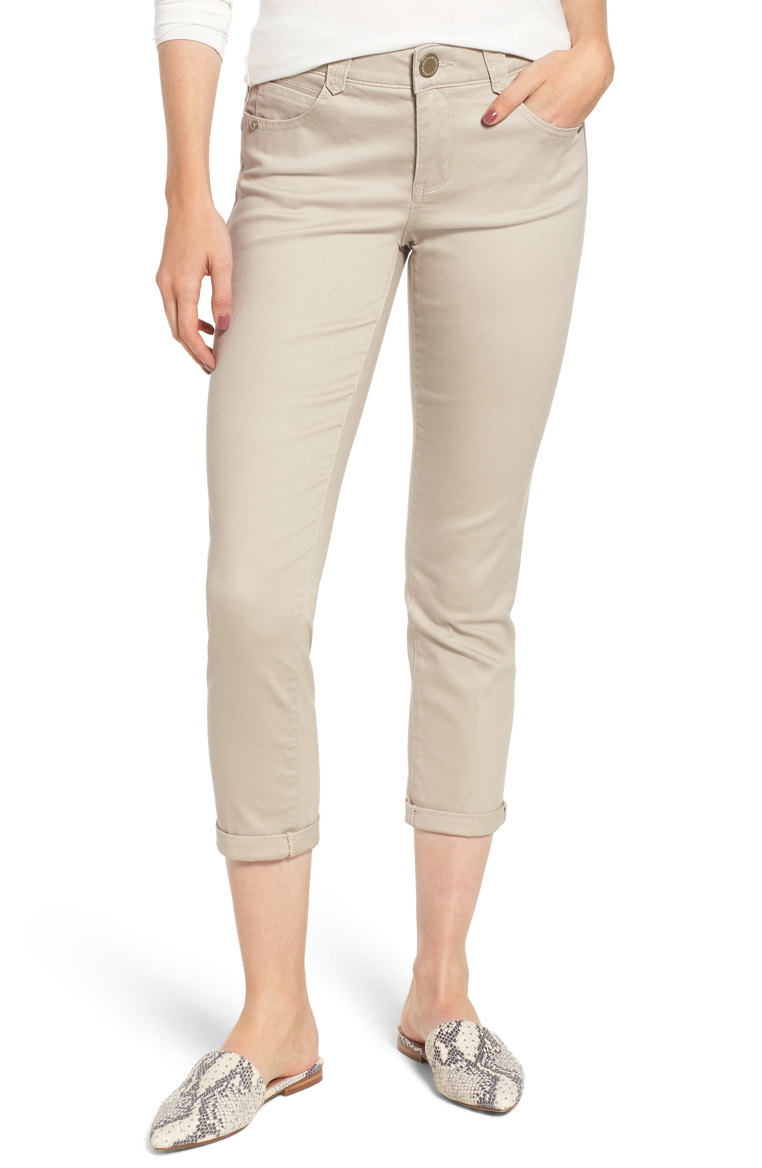 WIT & WISDOM Ab-Solution Crop Skinny Pants, Main, color, FLAX