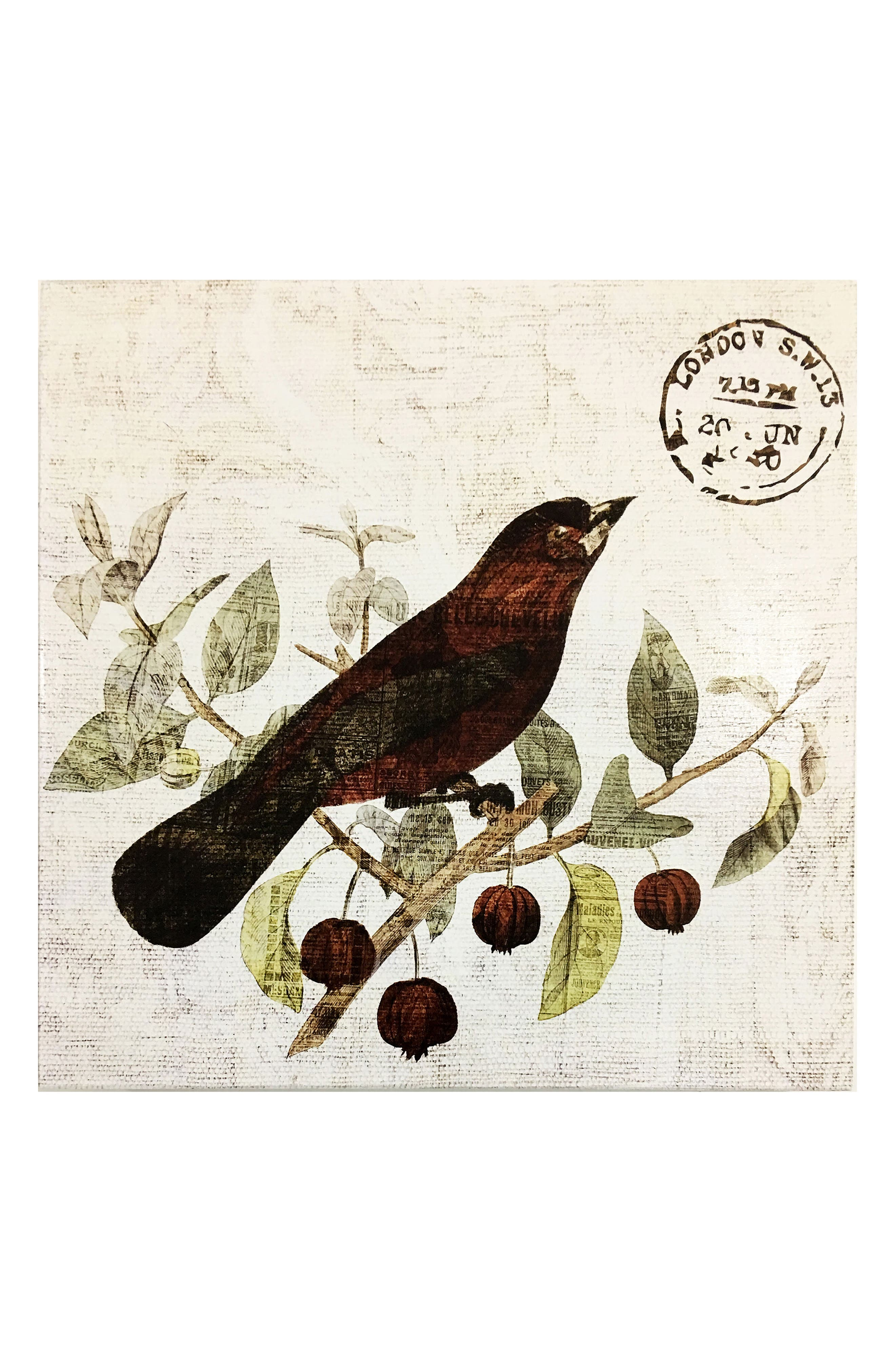 Wynwood Bird in the Tree II Wall Art,                             Main thumbnail 1, color,                             250