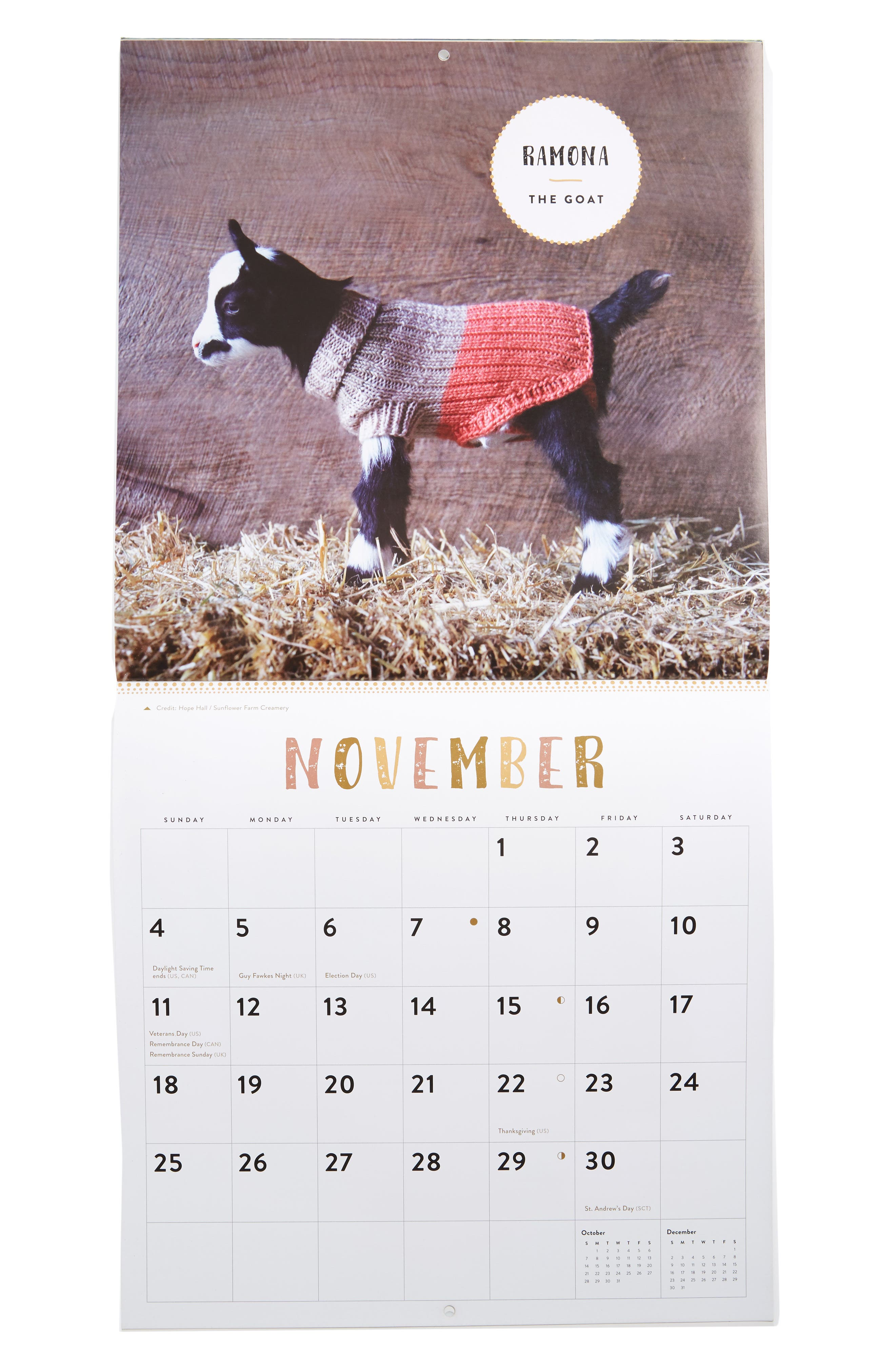 Baby Animals in Sweaters 2018 Wall Calendar,                             Alternate thumbnail 2, color,                             400