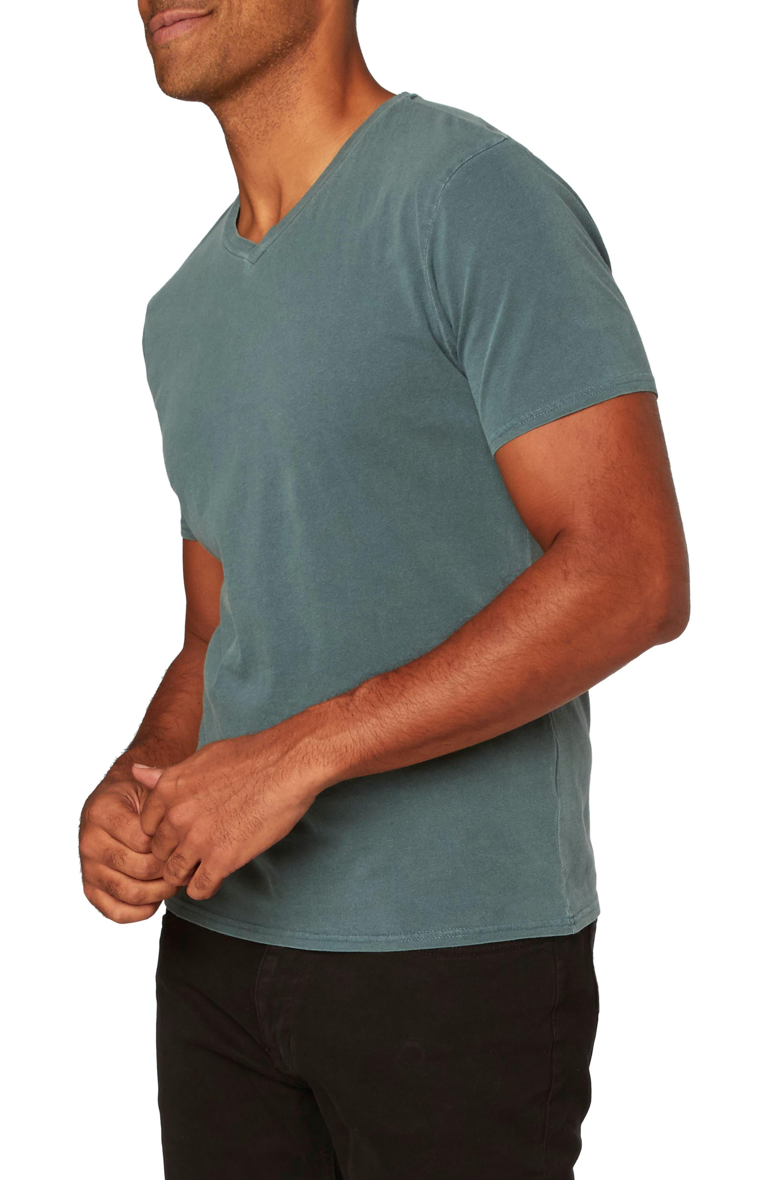 Standard V-Neck T-Shirt,                             Alternate thumbnail 16, color,