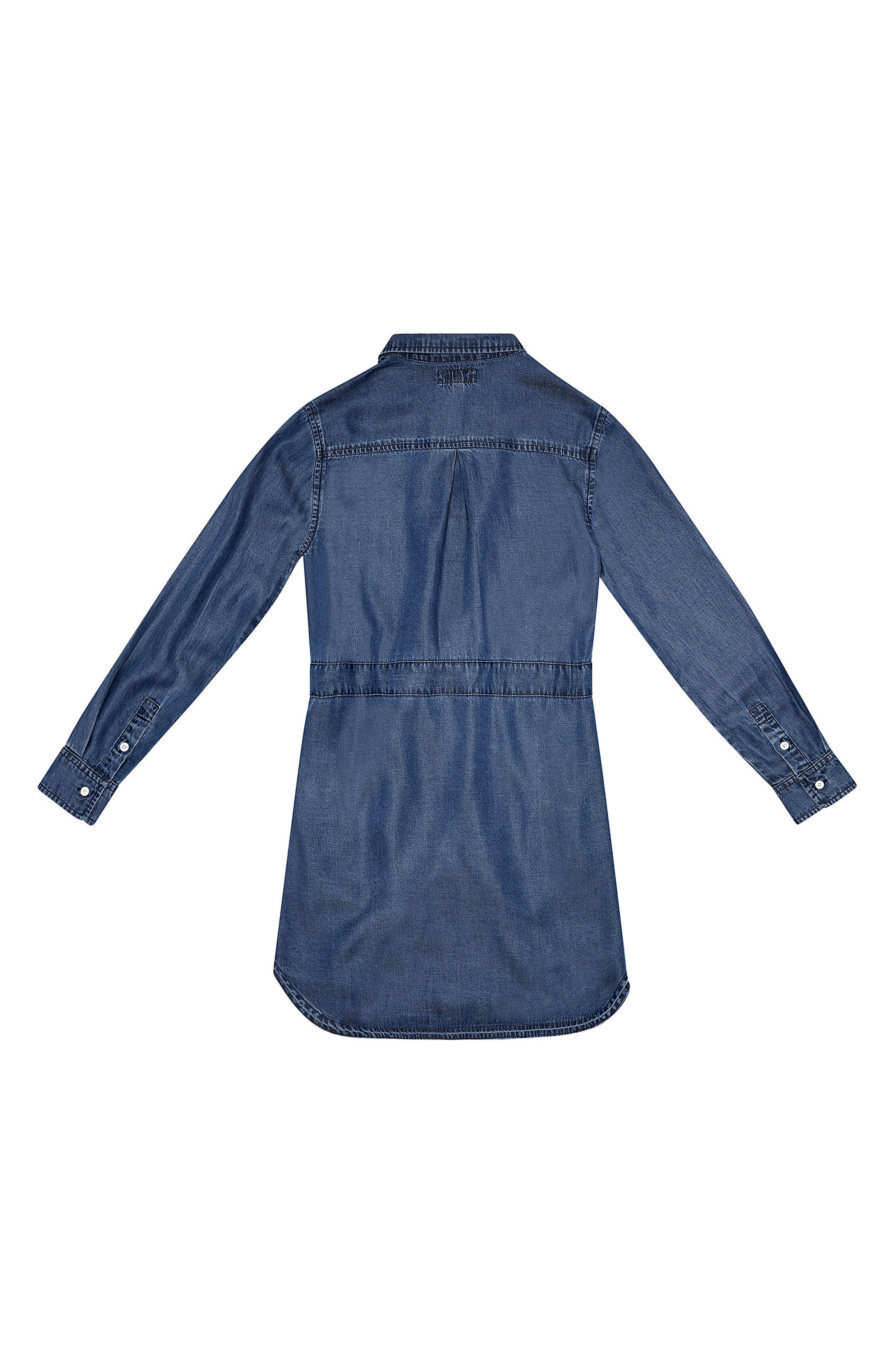 Chambray Shirtdress,                         Main,                         color, 400