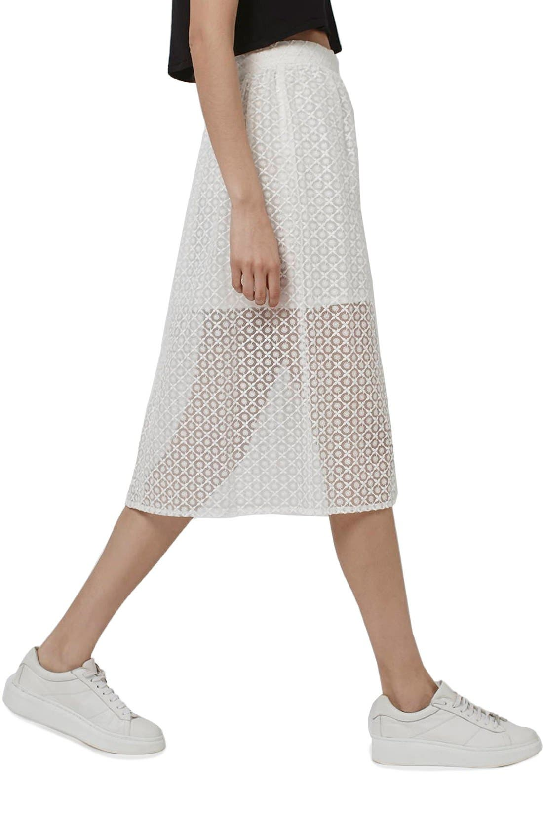 Floral Embroidered Organza Midi Skirt,                         Main,                         color, 100