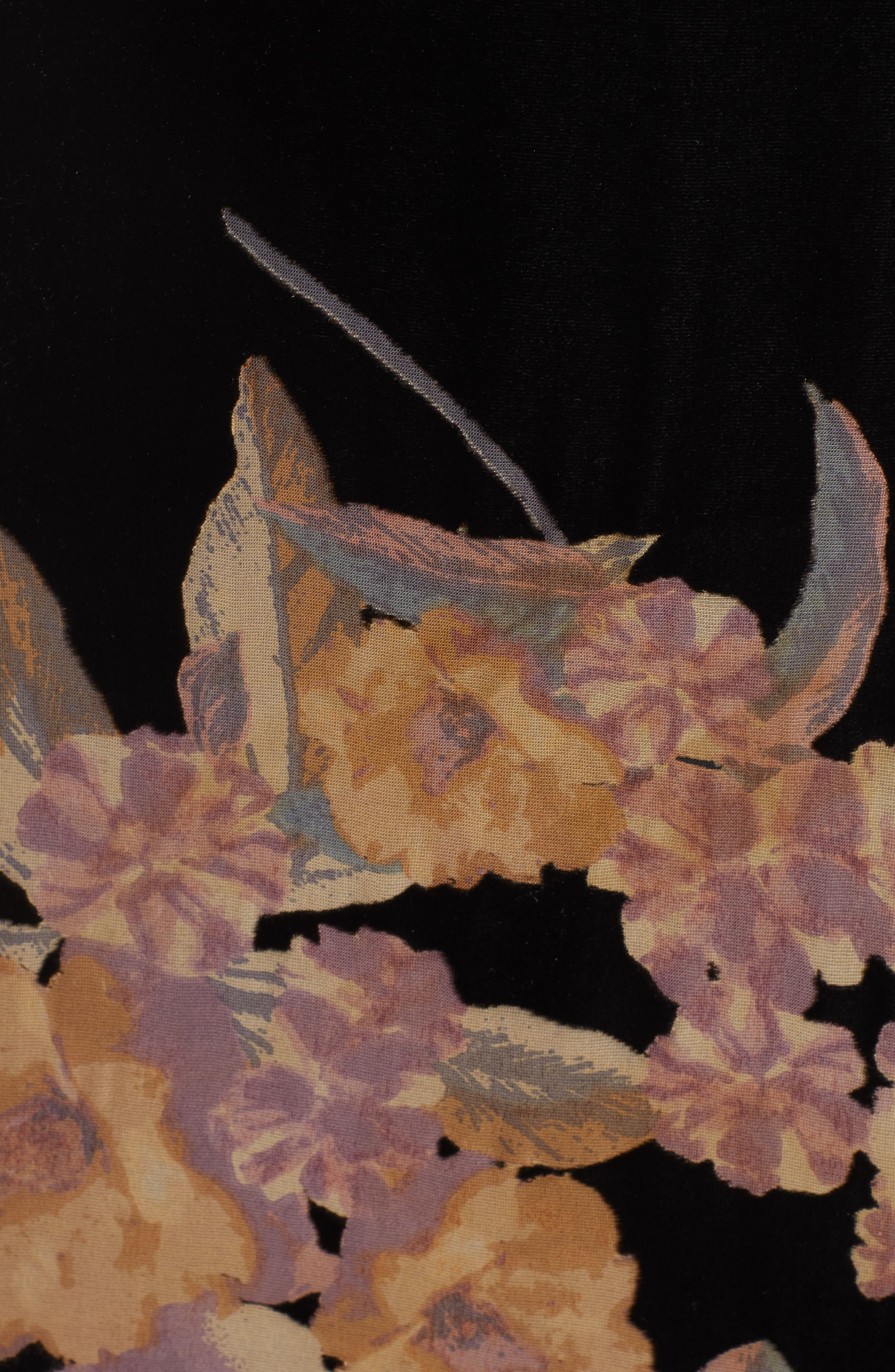 BAND OF GYPSIES,                             Mallorey Floral Print Velvet Dress,                             Alternate thumbnail 6, color,                             001