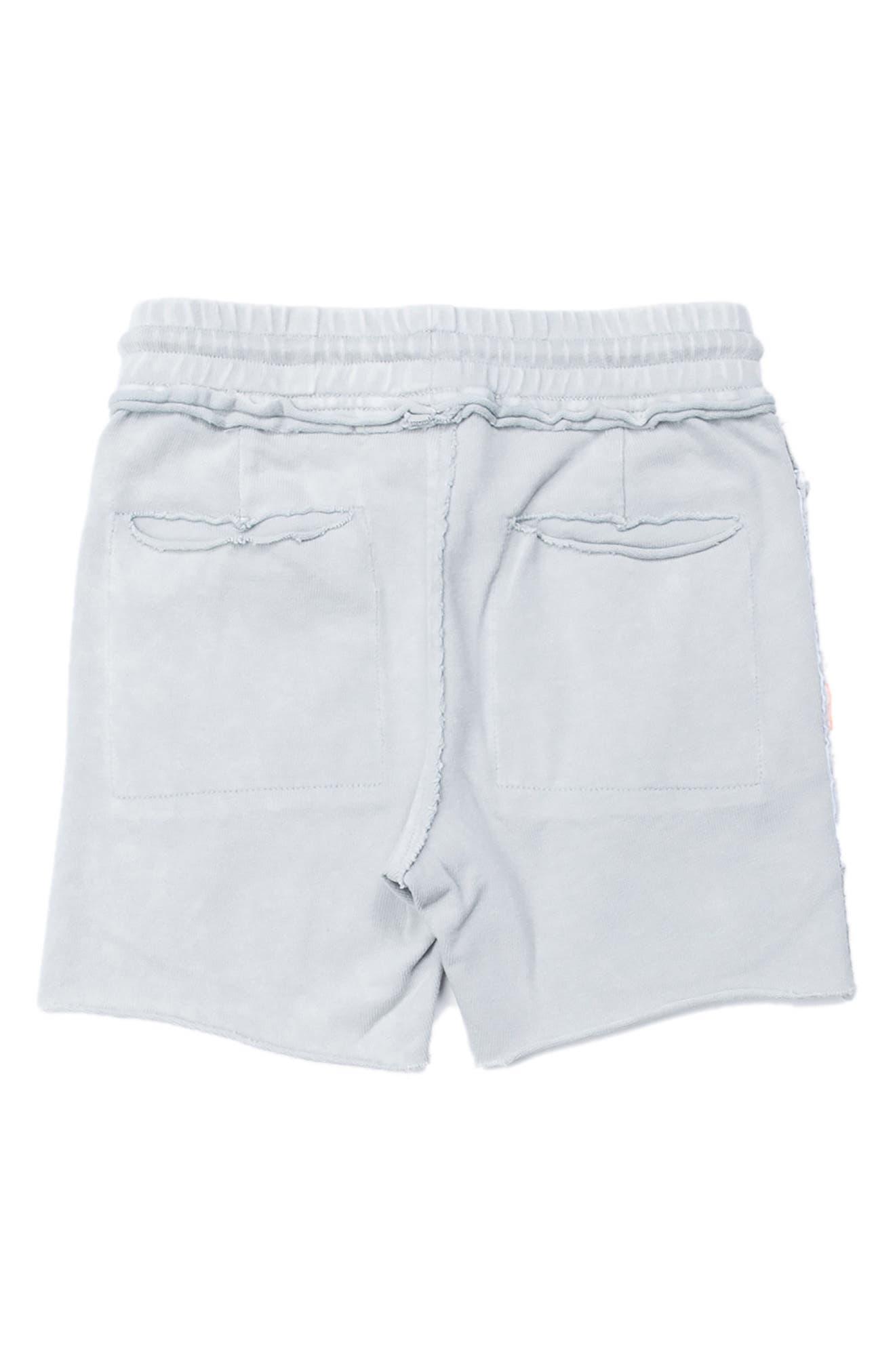 Kirk Distressed Shorts,                             Alternate thumbnail 2, color,                             020