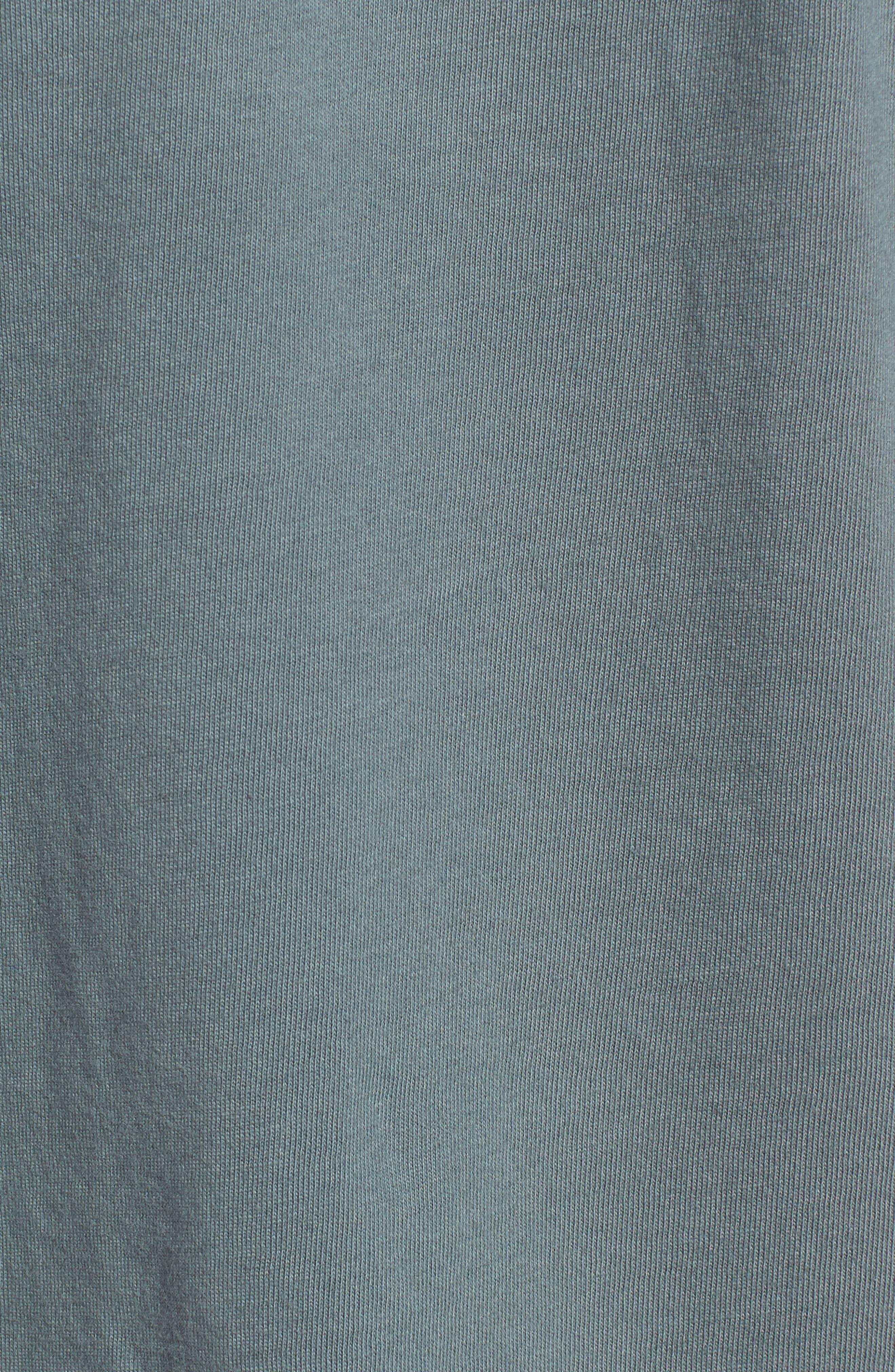 The Pump Long Sleeve Logo Graphic T-Shirt,                             Alternate thumbnail 5, color,                             443