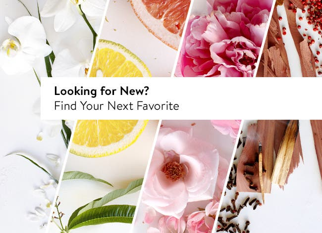 Find your next favorite fragrance.