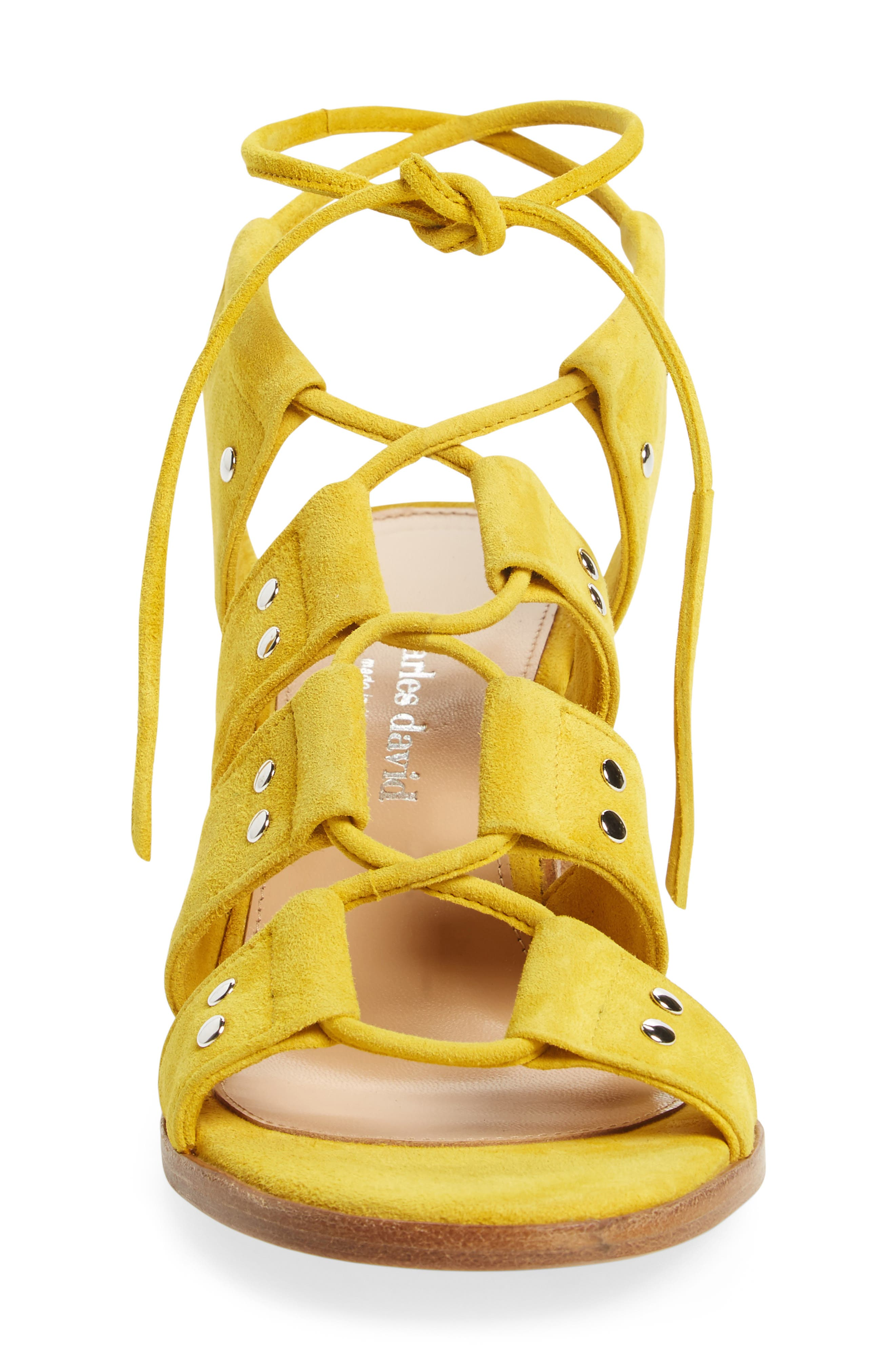 Birch Block Heel Sandal,                             Alternate thumbnail 12, color,