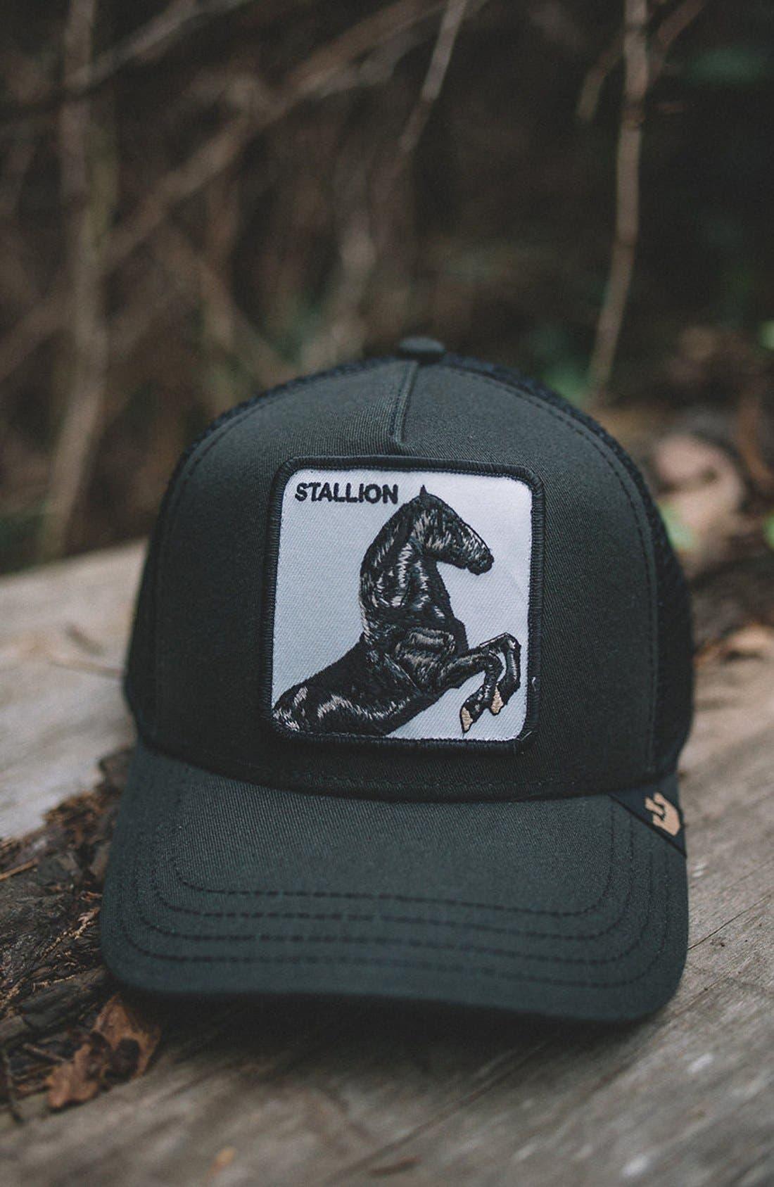 'Stallion' Trucker Hat,                             Alternate thumbnail 5, color,                             BLACK