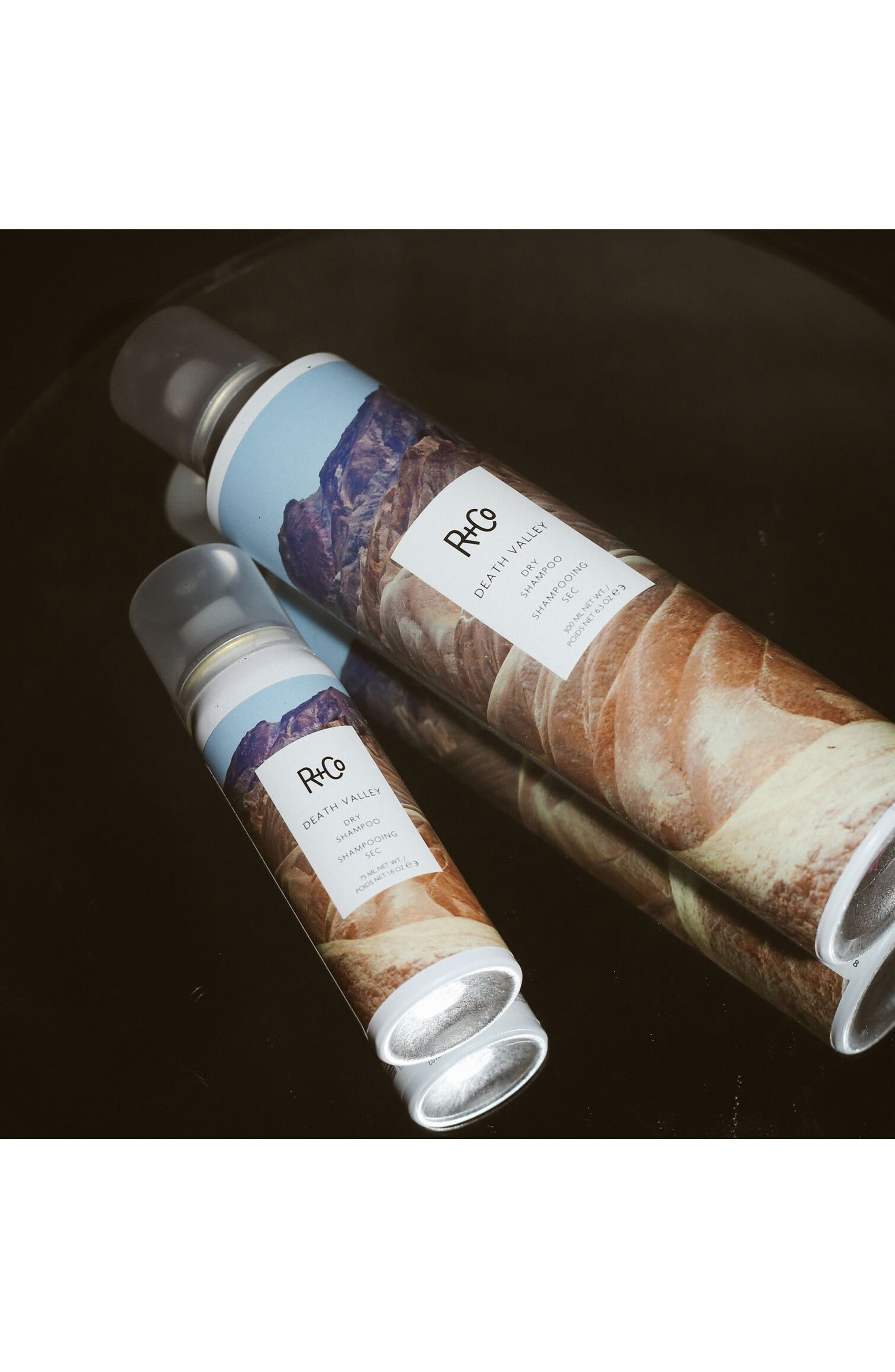 SPACE.NK.apothecary R+Co Death Valley Dry Shampoo,                             Alternate thumbnail 5, color,                             NO COLOR