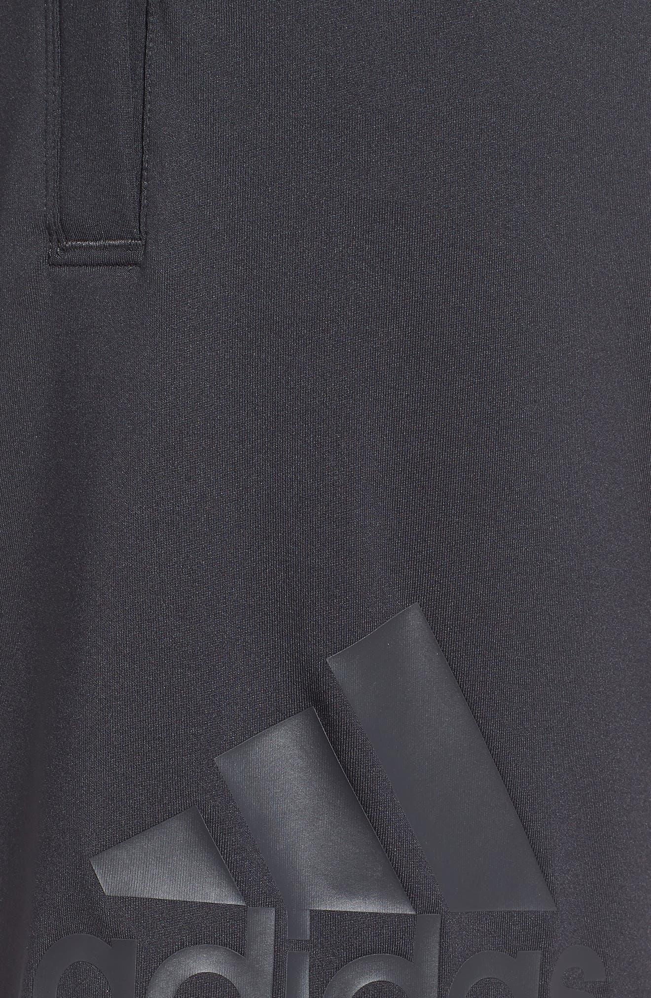 SB Hype Icon Shorts,                             Alternate thumbnail 4, color,                             CARBON/ BLACK