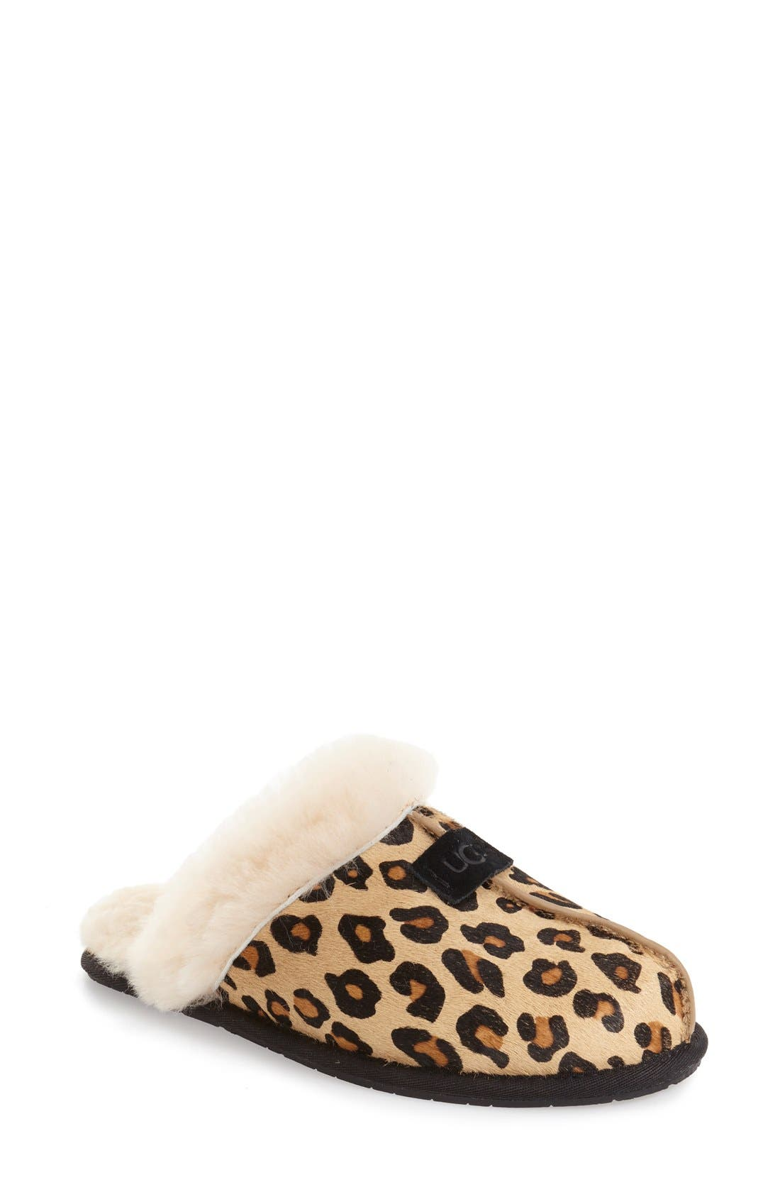 Scuffette II Leopard Spot Calf Hair Genuine Shearling Cuff Slipper,                             Main thumbnail 1, color,