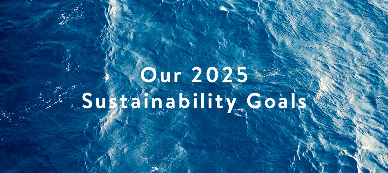 Our 2025 Sustainability Goals: Let's do better together.