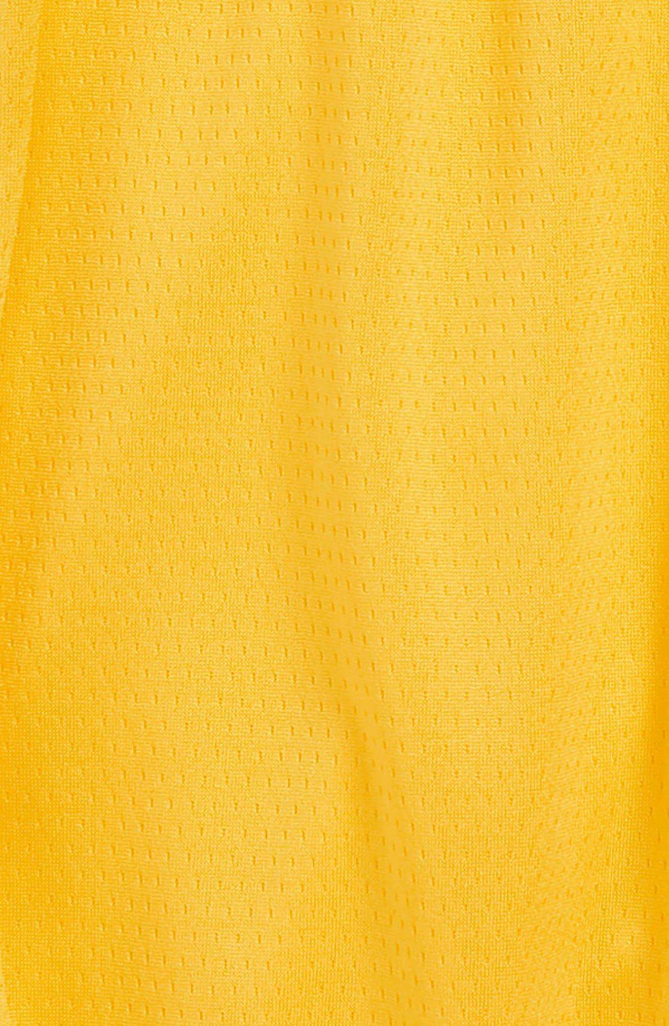 NIKE,                             Icon Los Angeles Lakers Basketball Shorts,                             Alternate thumbnail 2, color,                             710