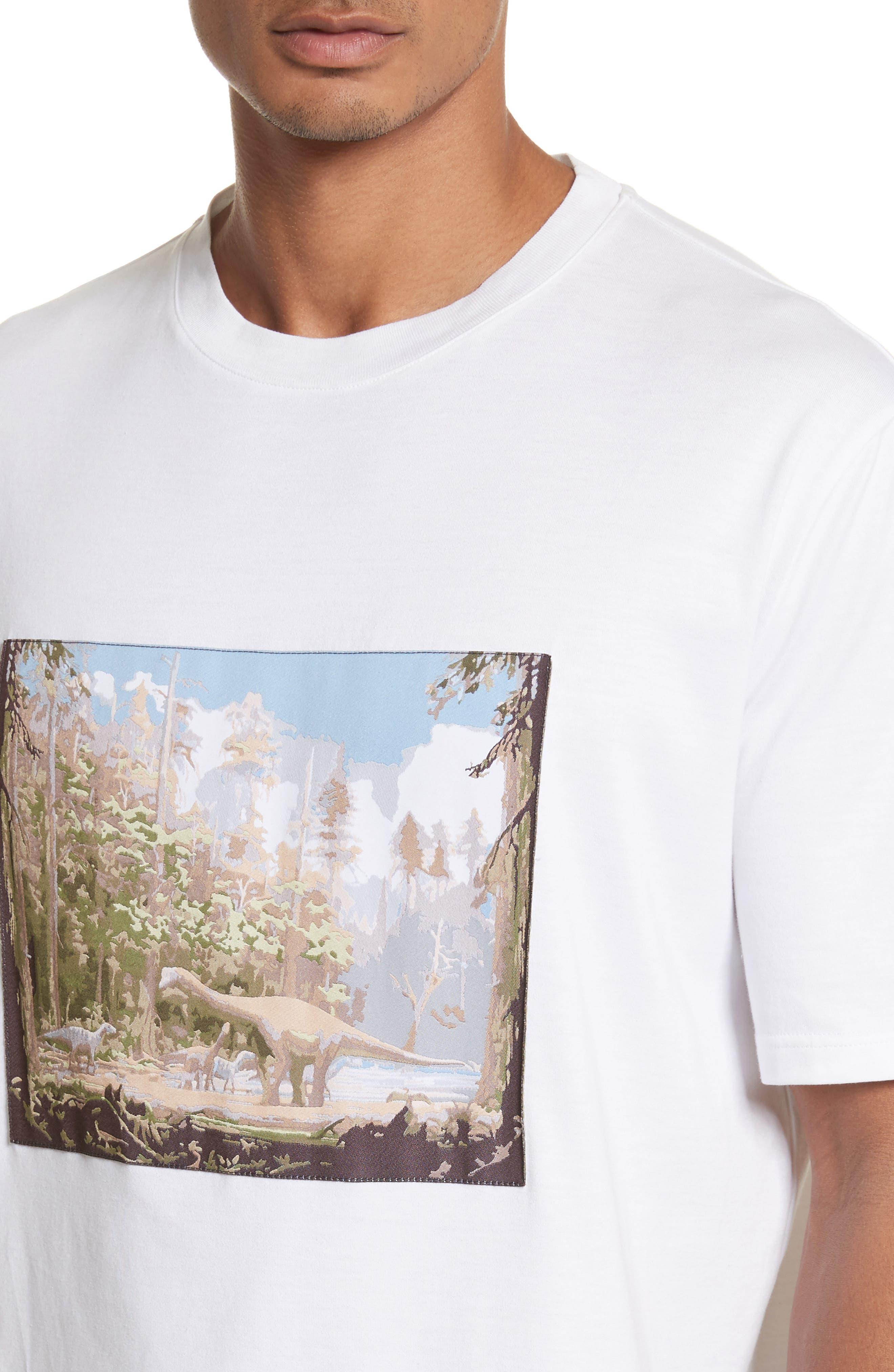 Dinosaur Patch T-Shirt,                             Alternate thumbnail 4, color,                             100