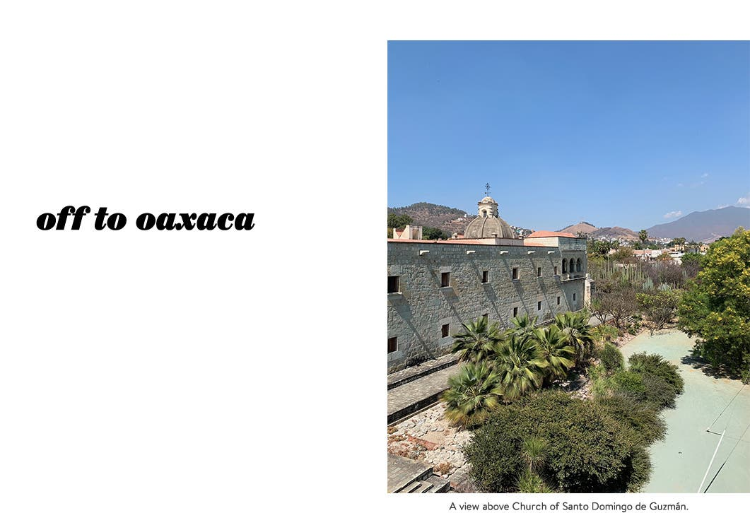 Off to Oaxaca: a view of Oaxaca, Mexico.