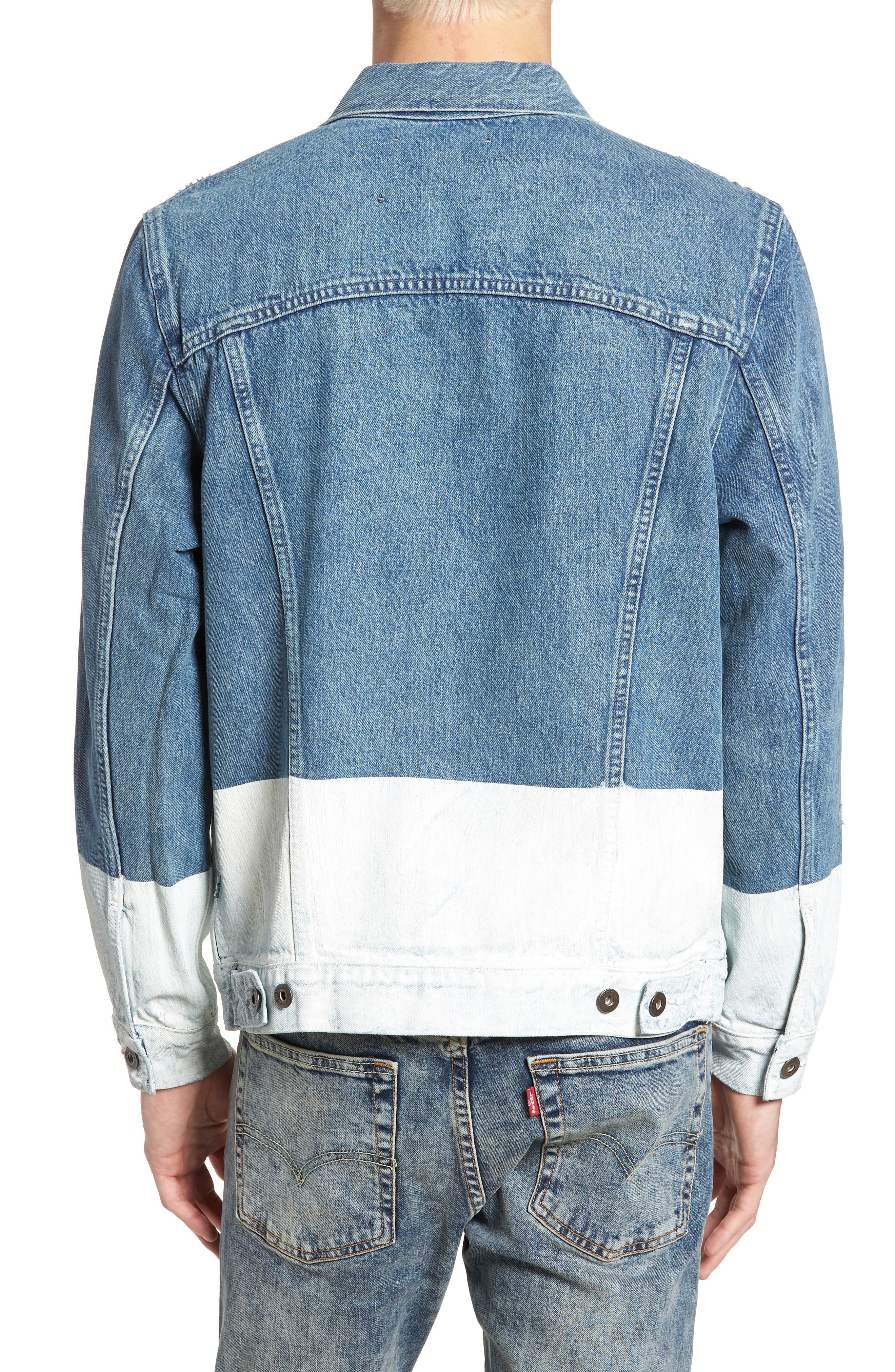 Type IV Standard Fit Trucker Denim Jacket,                             Alternate thumbnail 2, color,                             HORSESHOE