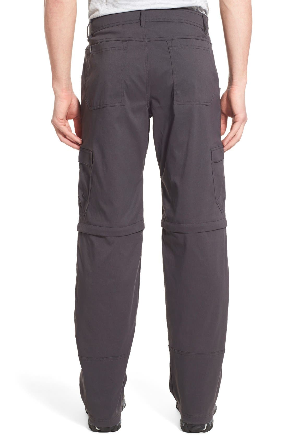 Zion Stretch Convertible Cargo Hiking Pants,                             Alternate thumbnail 8, color,                             010