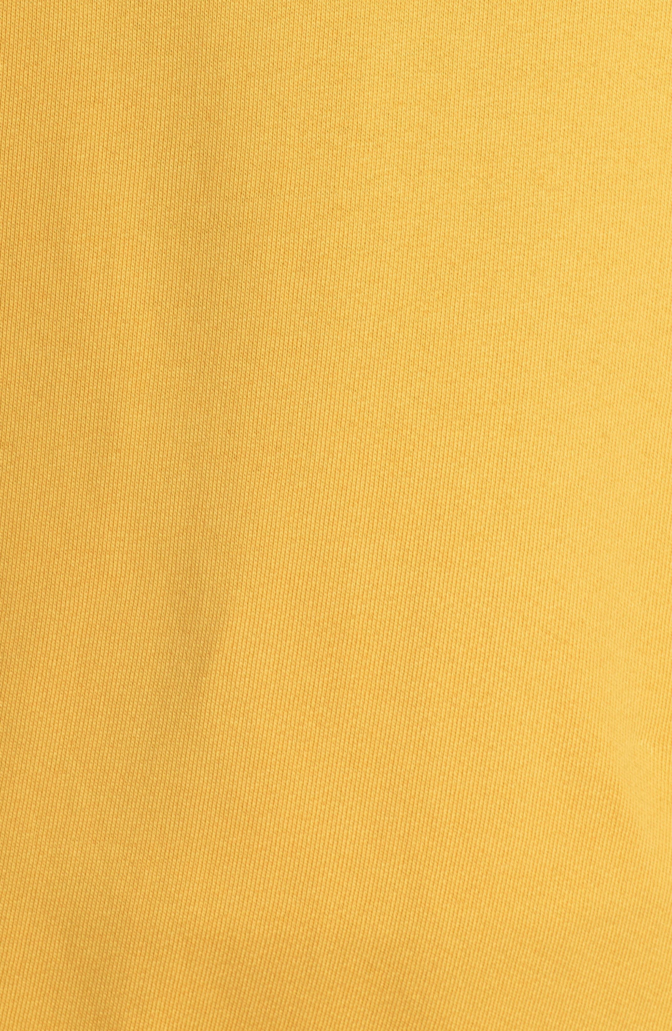 Raglan Sleeve Hoodie,                             Alternate thumbnail 6, color,                             GOLDEN SUN