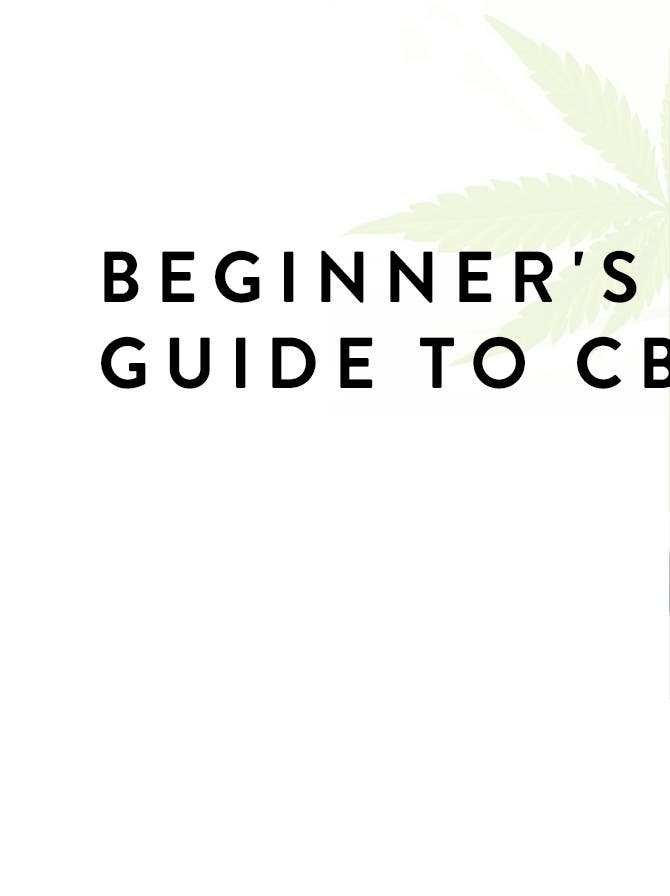 Beginner's Guide to CBD: the Benefits, the Facts & Our Faves