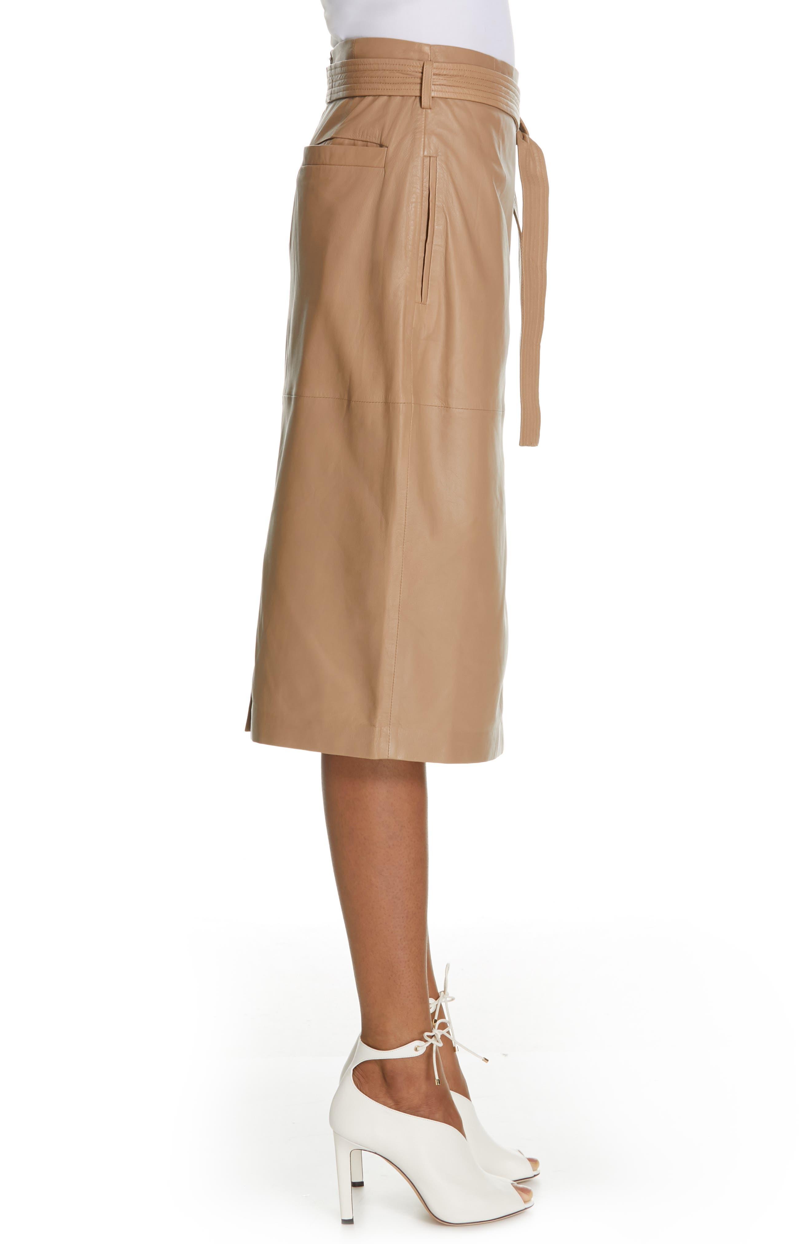 Alouetta Leather Skirt,                             Alternate thumbnail 3, color,                             BOIS