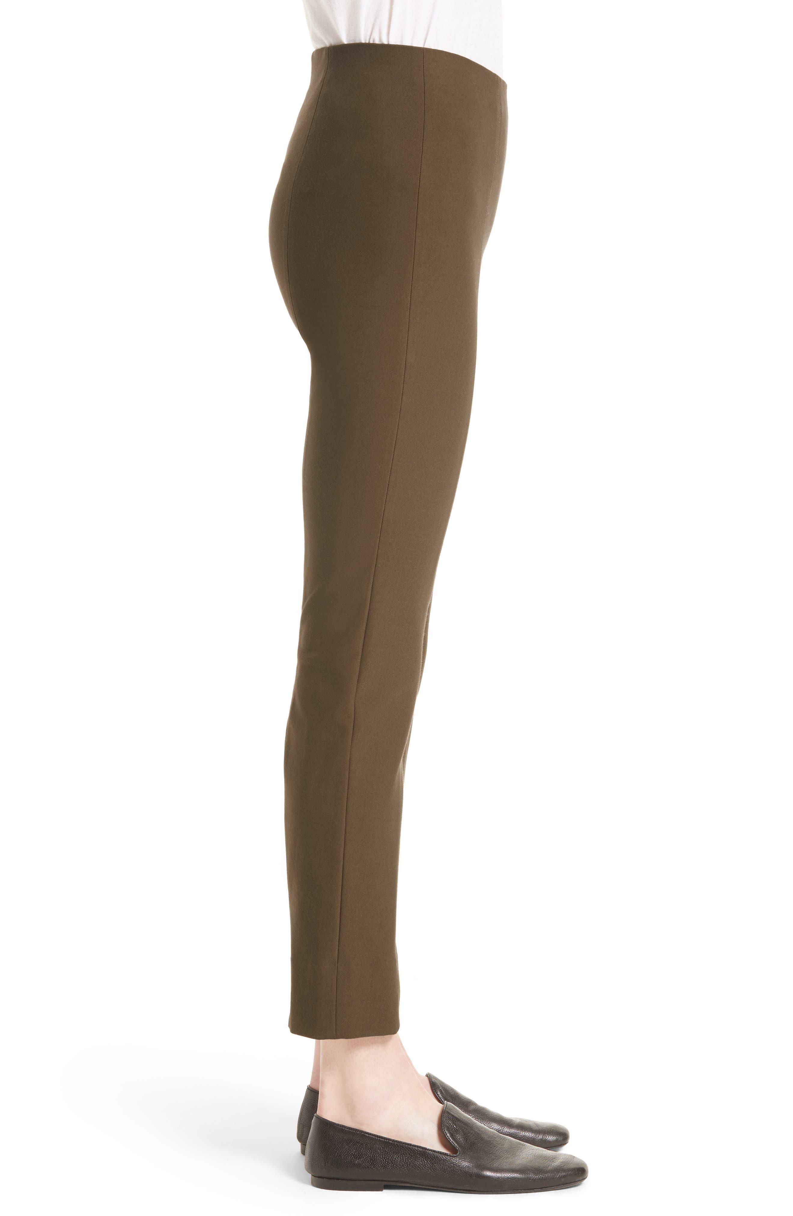 Seamed Leg Skinny Pants,                             Alternate thumbnail 3, color,                             244