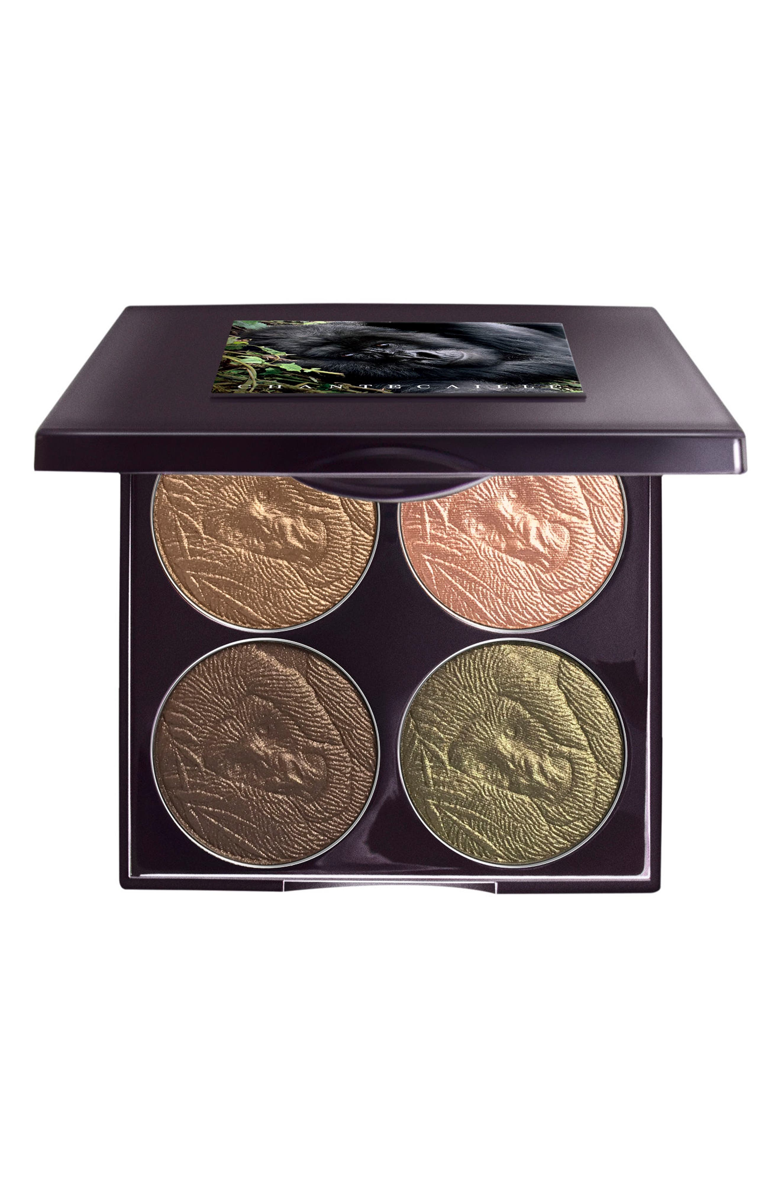 Save the Forest Eye Palette,                             Main thumbnail 1, color,                             000