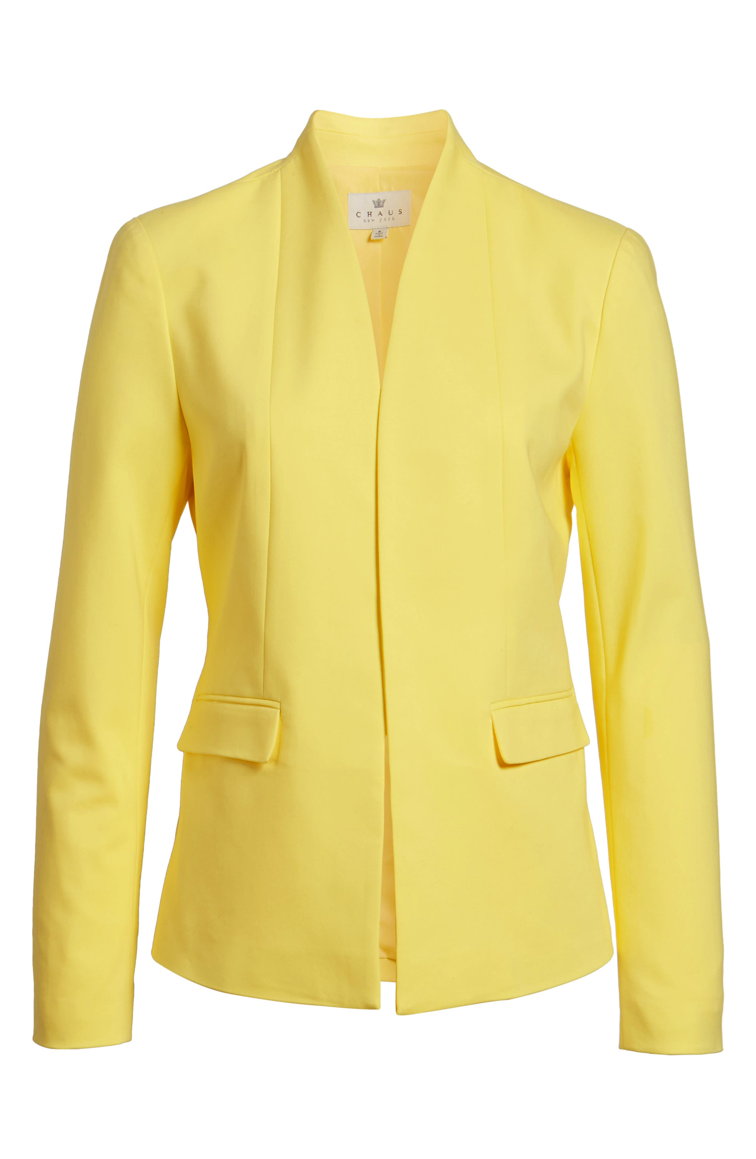 Stand Collar Jacket,                             Alternate thumbnail 5, color,                             784
