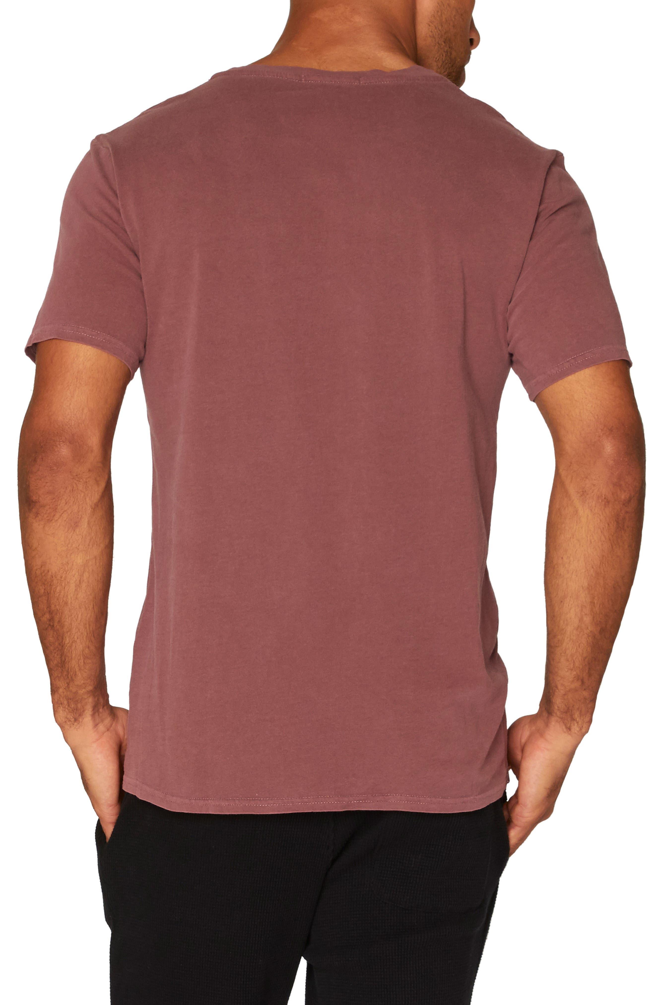 Standard V-Neck T-Shirt,                             Alternate thumbnail 12, color,