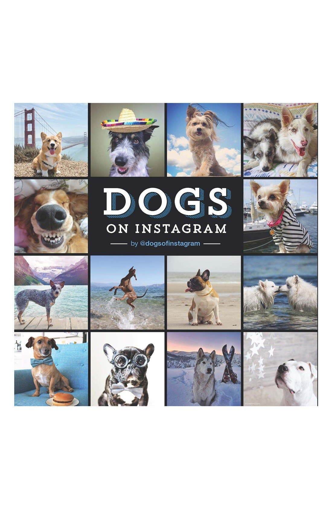 CHRONICLE BOOKS,                             'Dogs on Instagram' Book,                             Main thumbnail 1, color,                             001