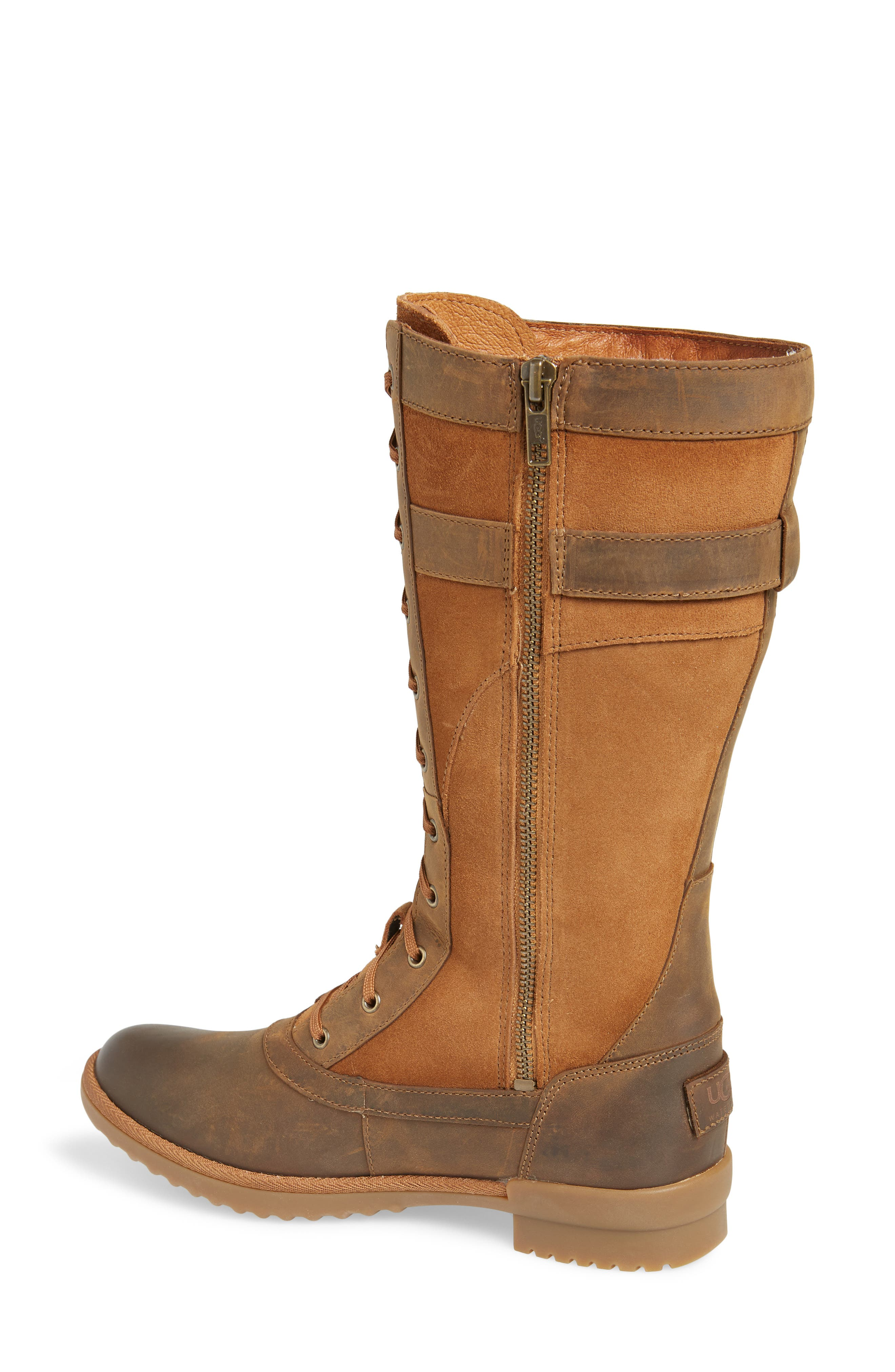 Brystl Waterproof Insulated Boot,                             Alternate thumbnail 2, color,                             CHESTNUT