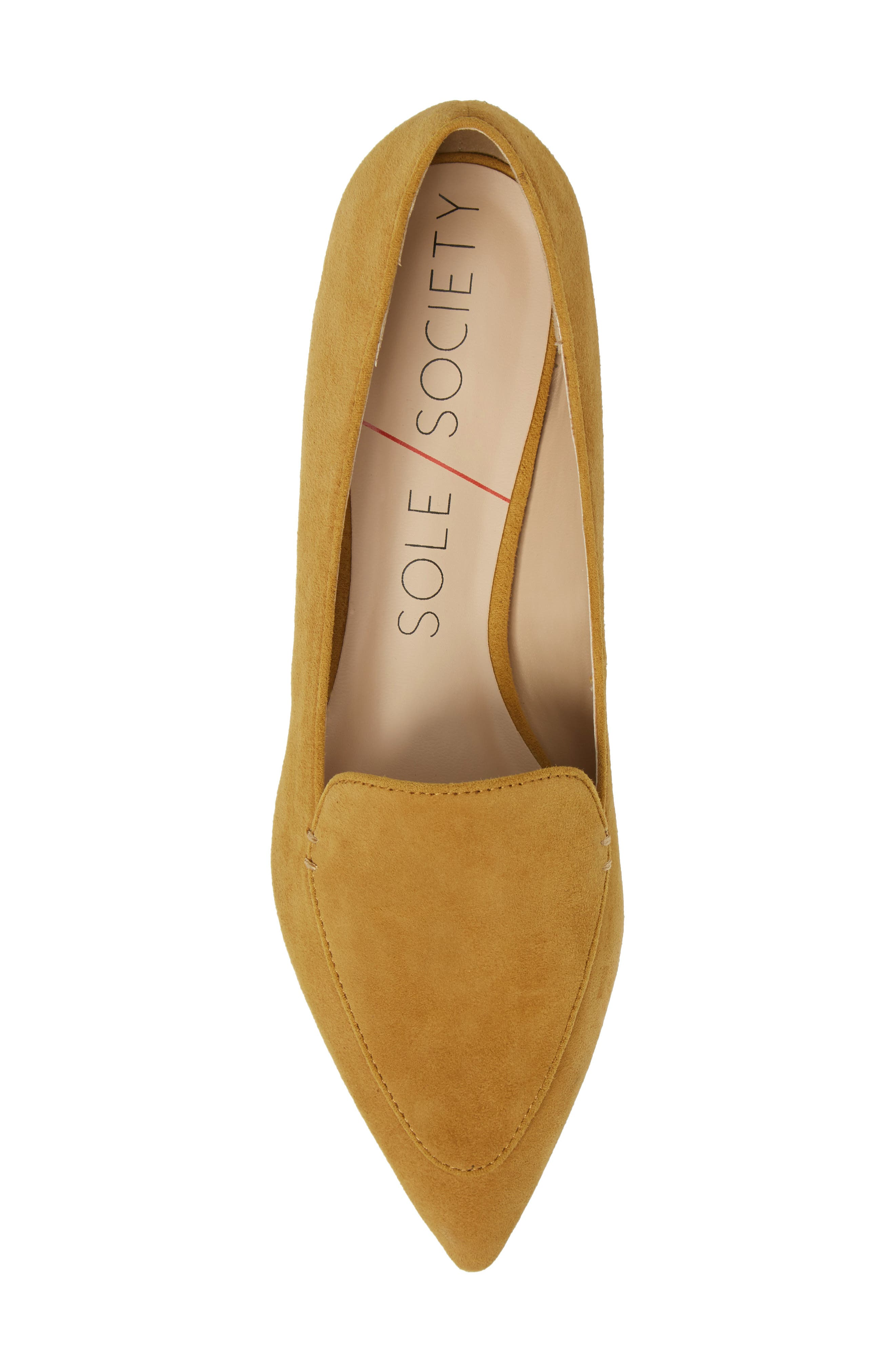'Cammila' Pointy Toe Loafer,                             Alternate thumbnail 49, color,