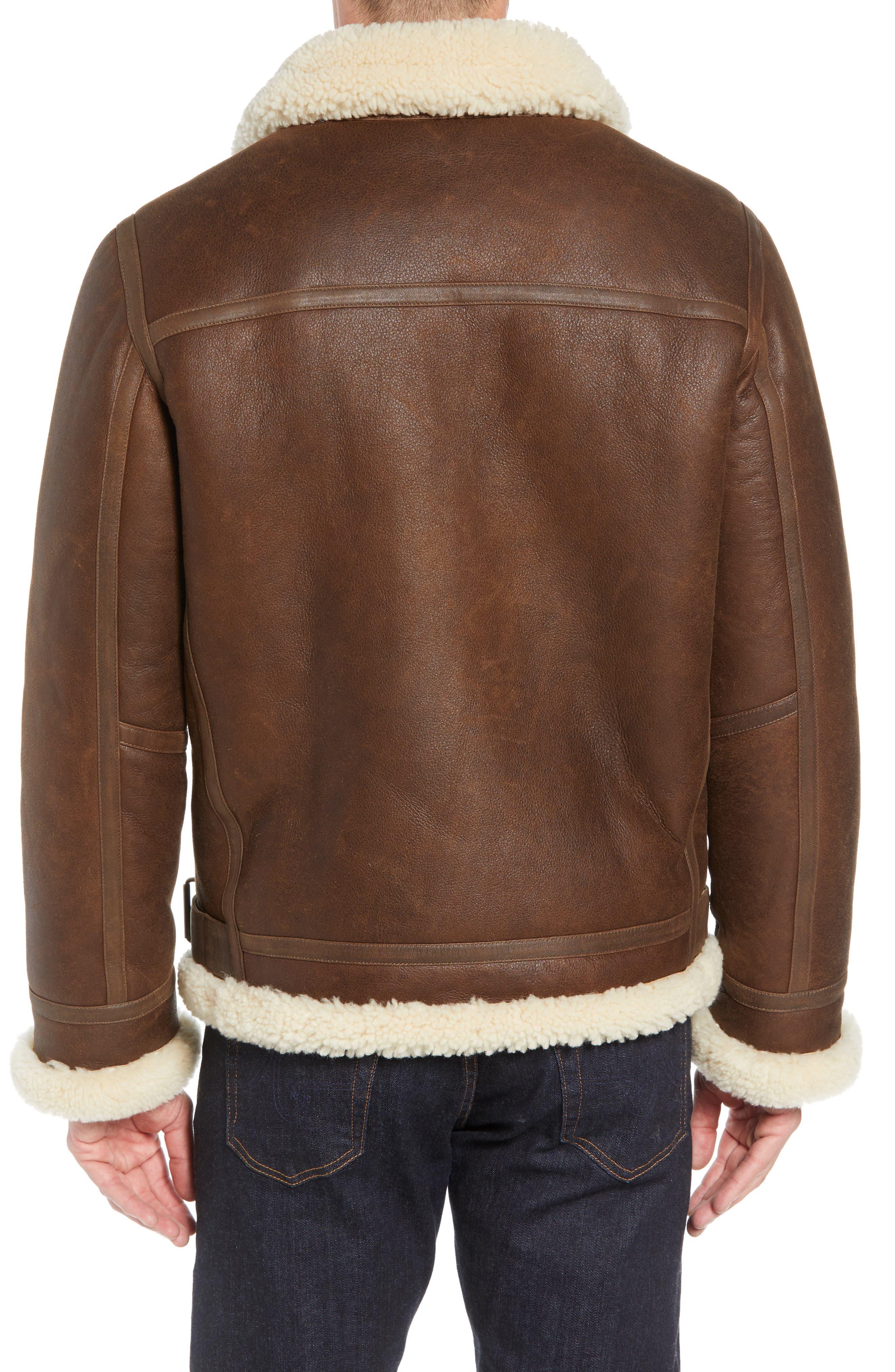 Auden Genuine Shearling Aviator Jacket,                             Alternate thumbnail 2, color,                             CHESTNUT