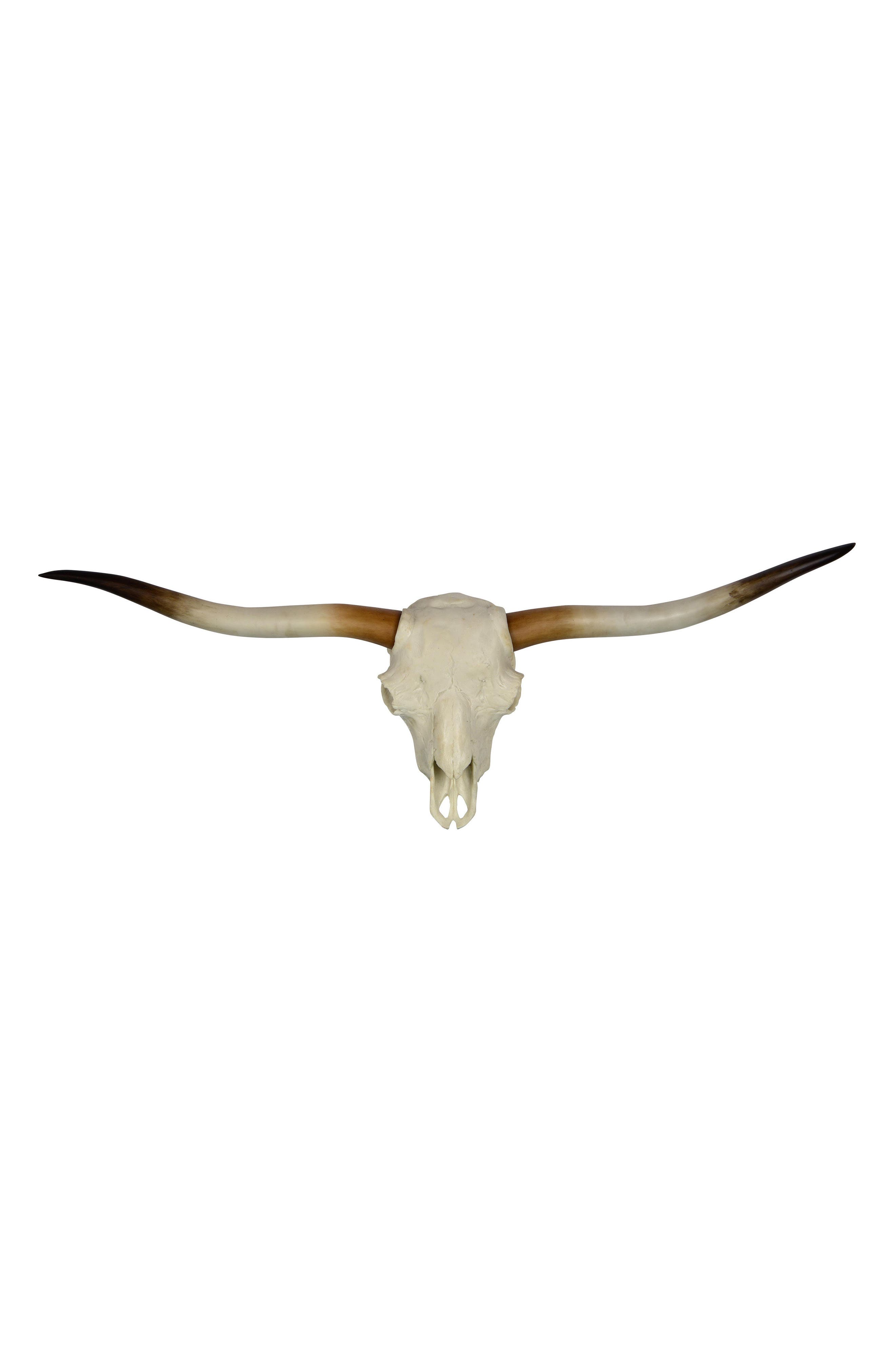 Resin Longhorn Skull Wall Ornament,                         Main,                         color, 100