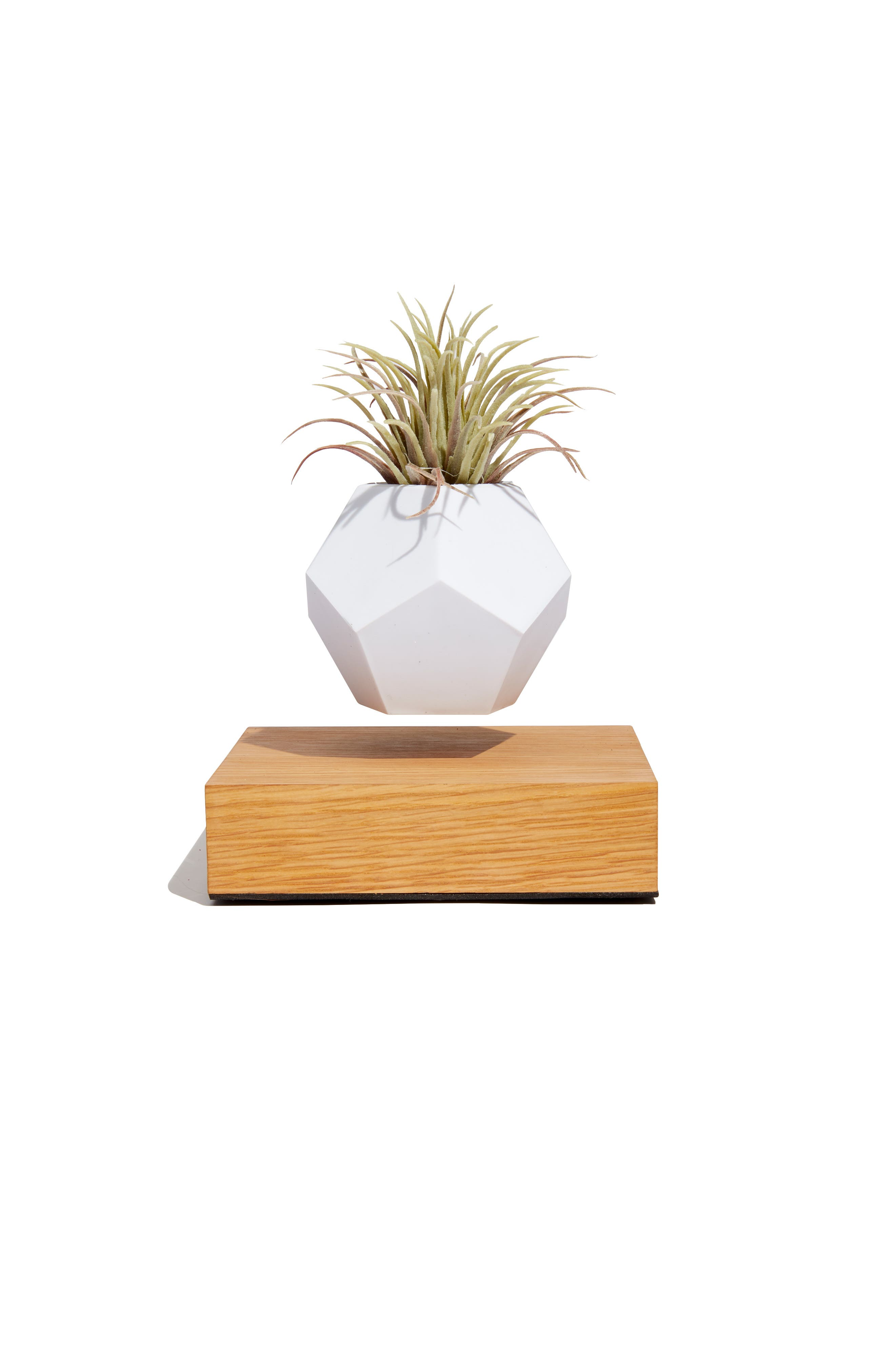 Lyfe Levitating Planter,                             Main thumbnail 1, color,                             100