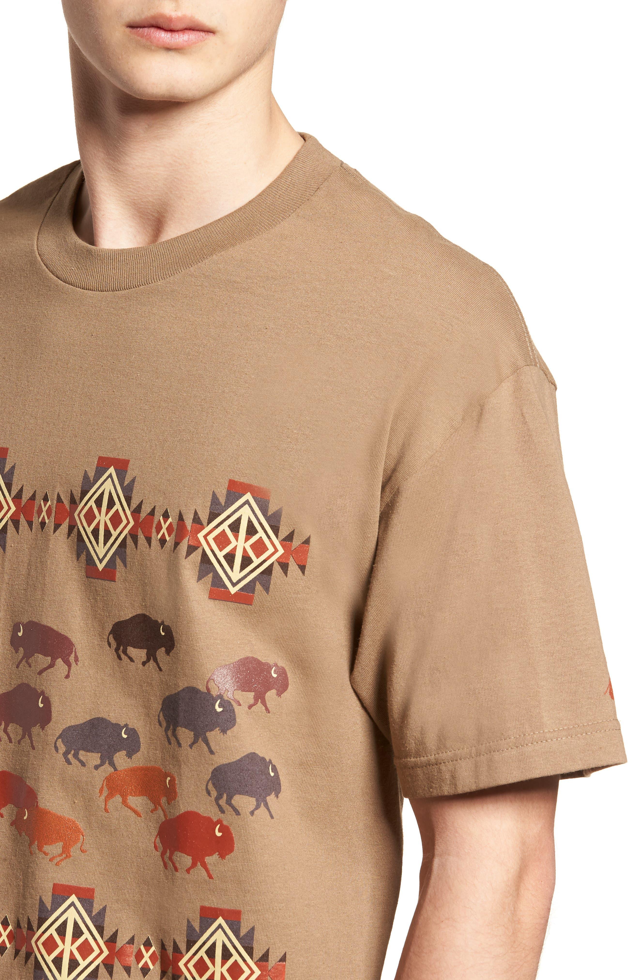 Graphic T-Shirt,                             Alternate thumbnail 4, color,                             250