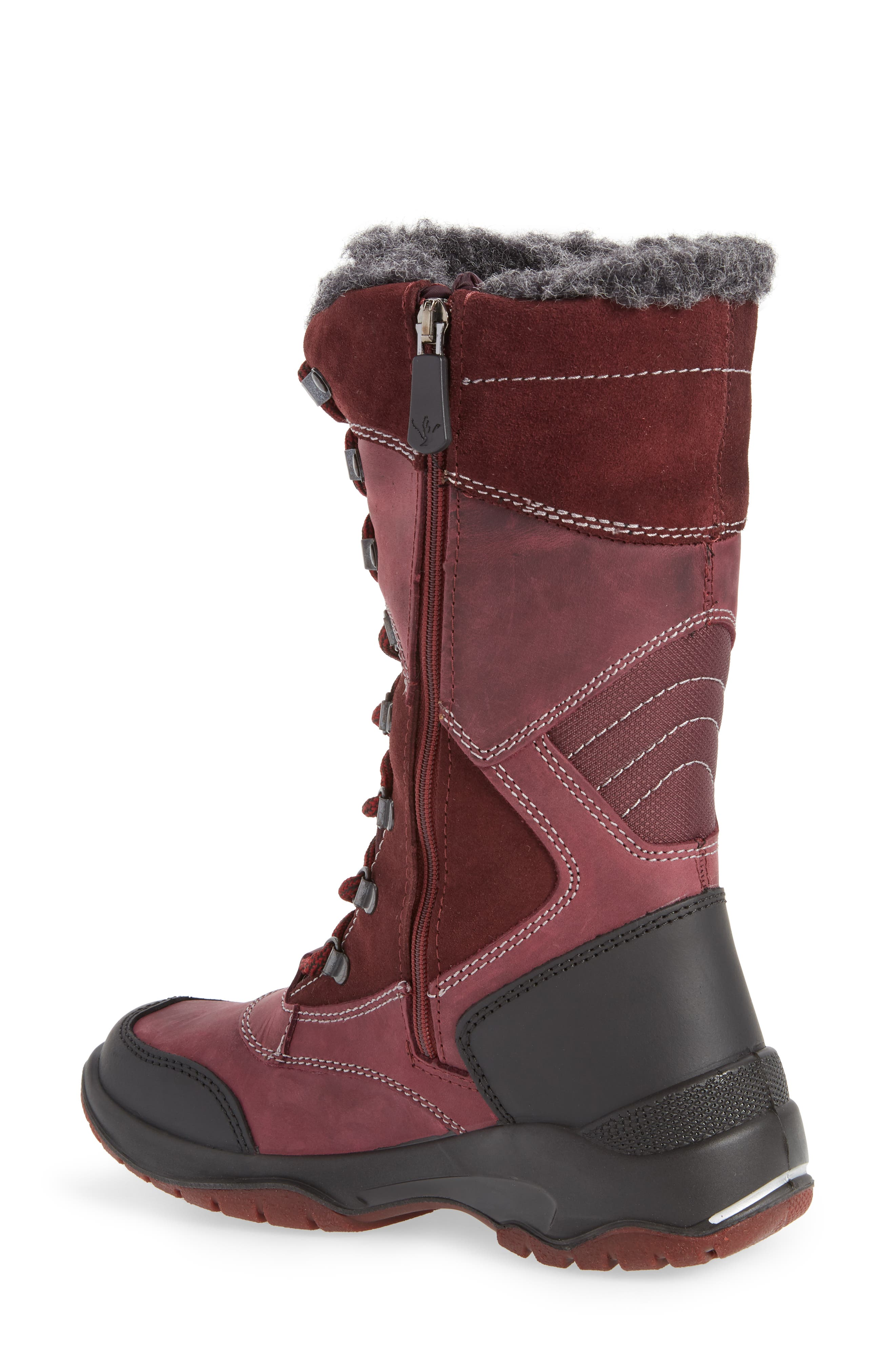 Topspeed Faux Fur Lined Waterproof Boot,                             Alternate thumbnail 2, color,                             BORDEAUX SUEDE