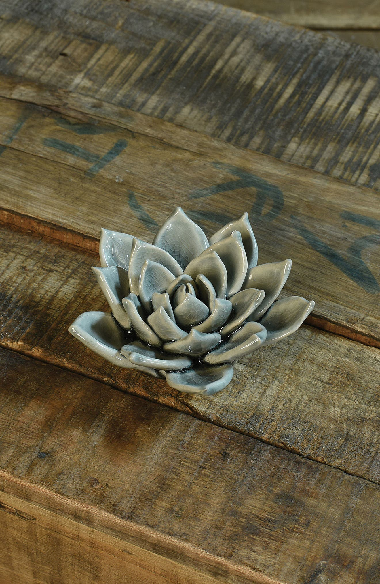 Ceramic Succulent,                             Alternate thumbnail 2, color,                             GREY