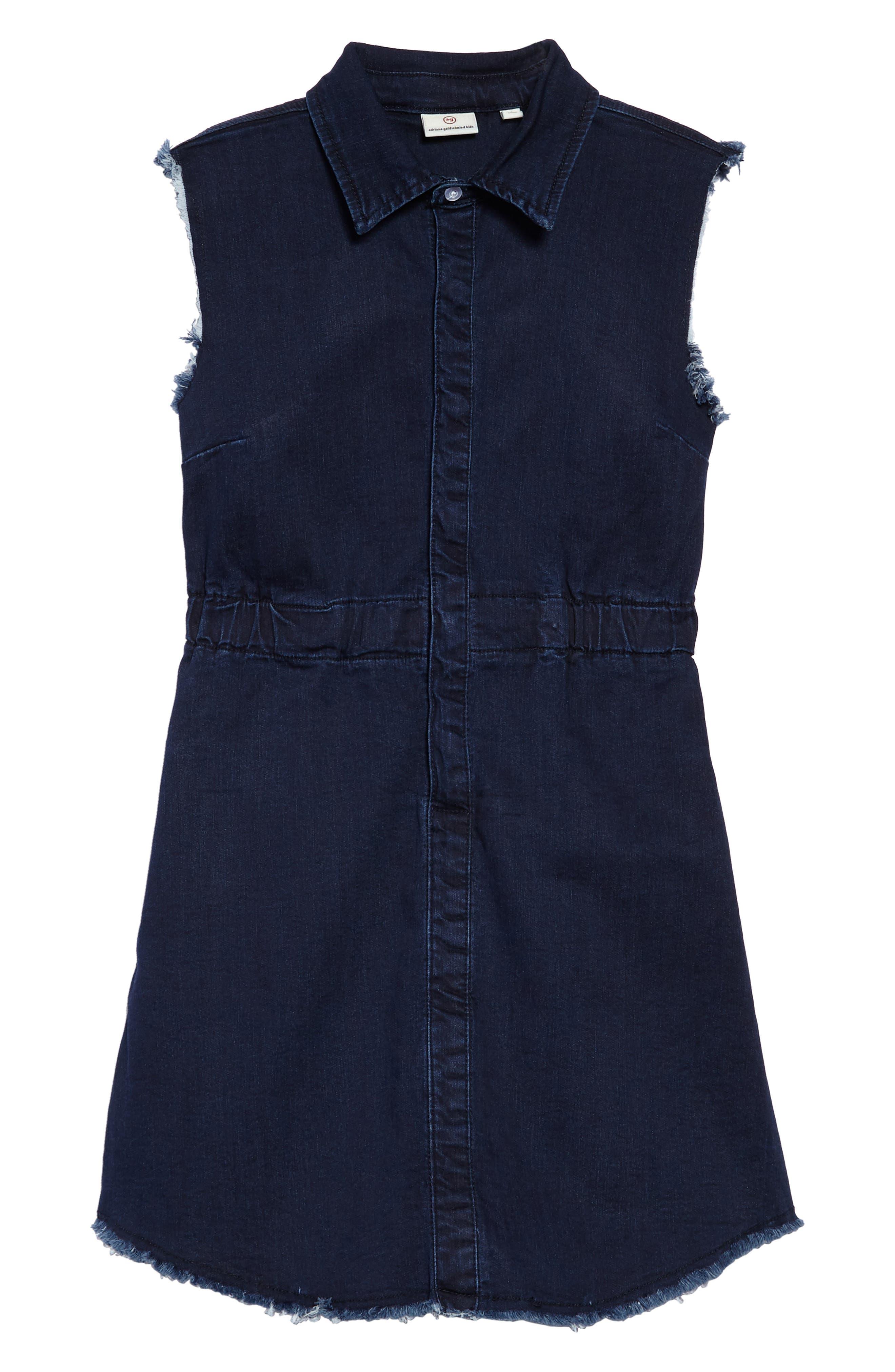 Rosanna Chambray Dress,                             Main thumbnail 1, color,                             490
