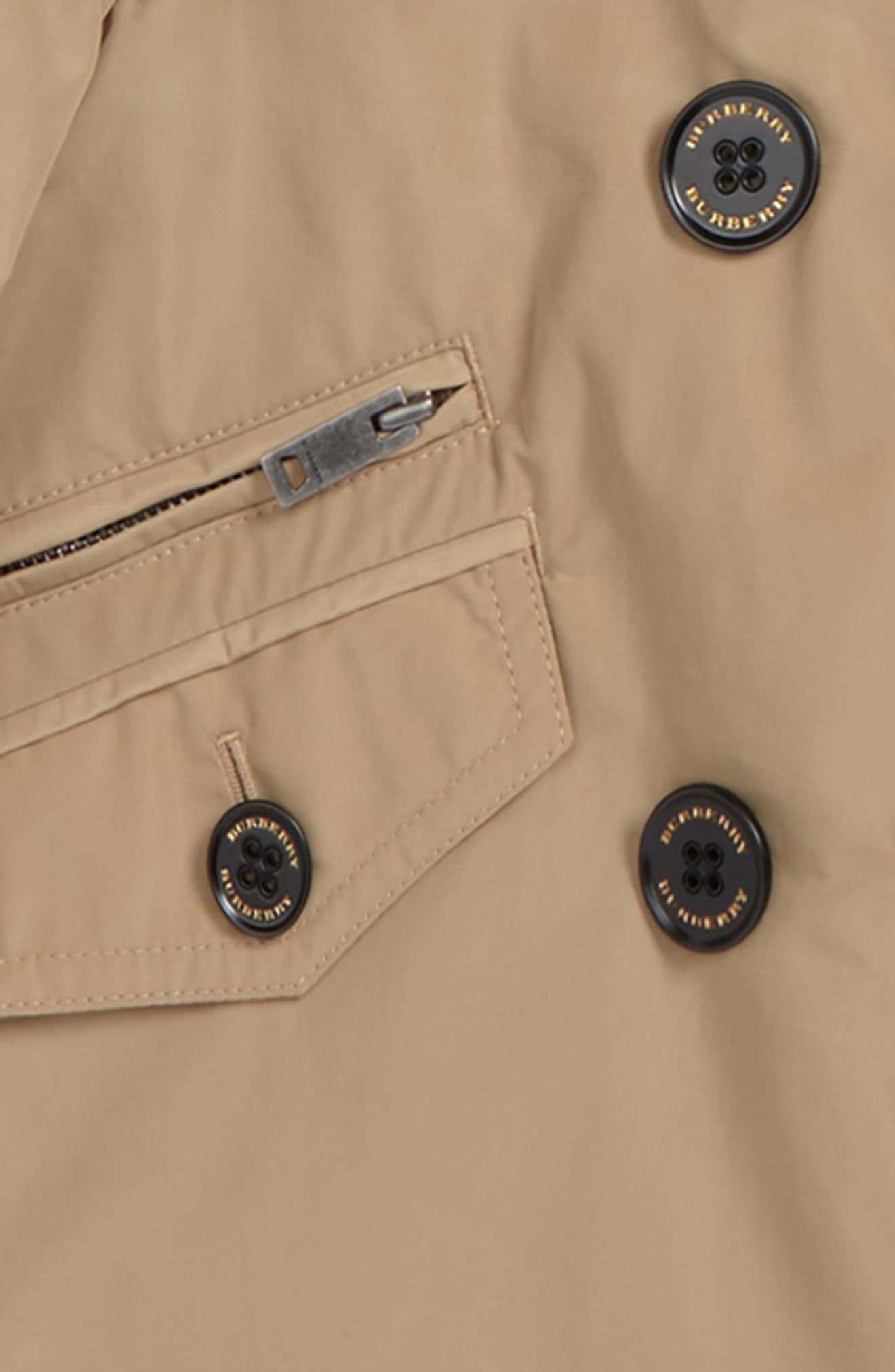 Margeretta Hooded Jacket,                             Alternate thumbnail 2, color,                             255