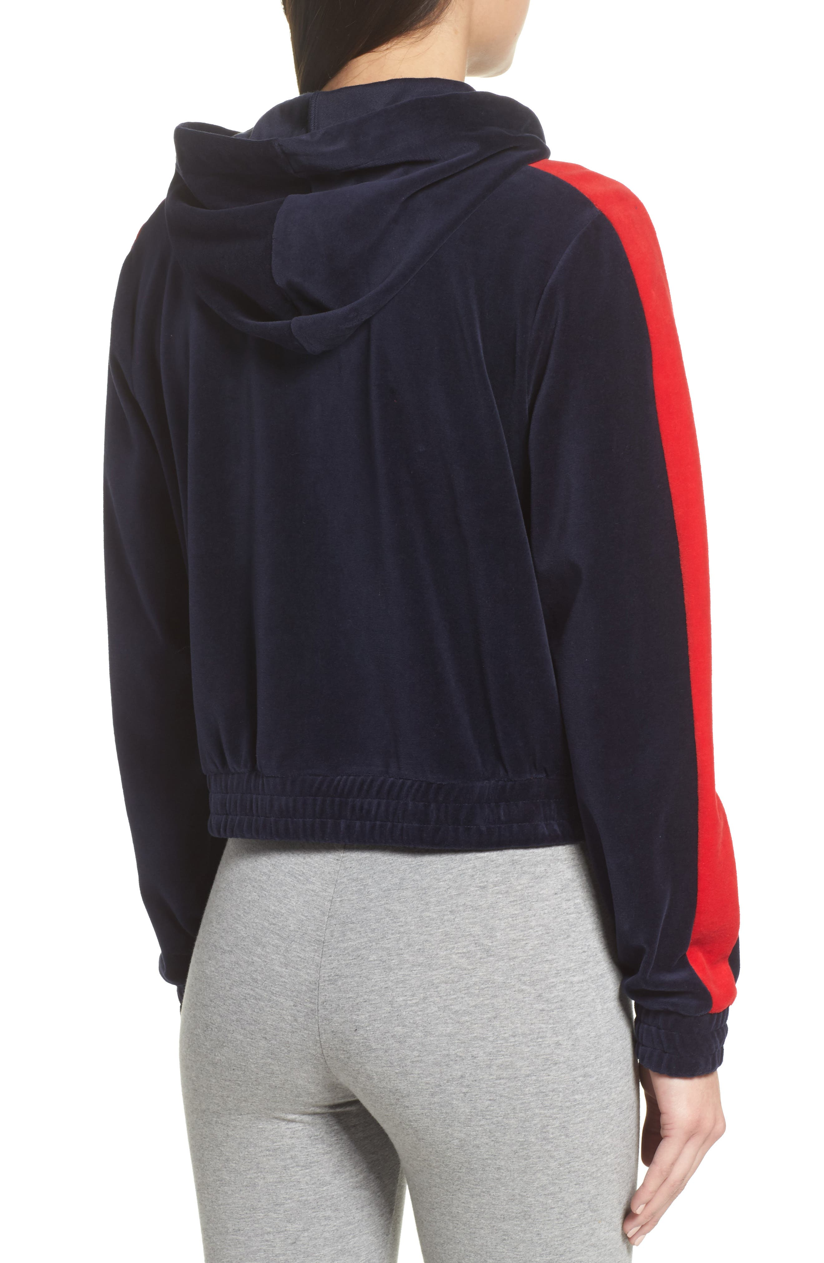 Carly Velour Hoodie,                             Alternate thumbnail 4, color,