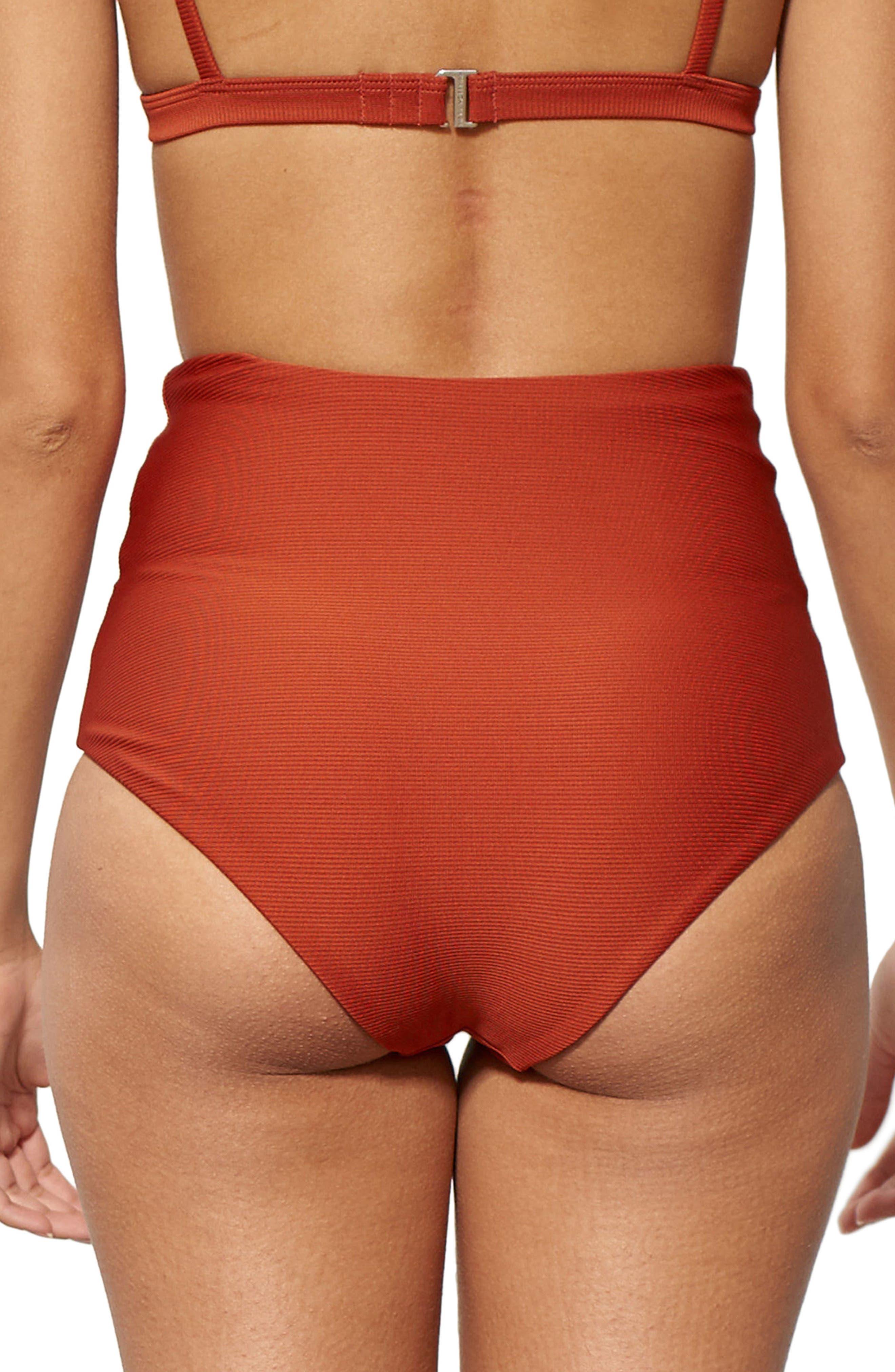 Lydia High Waist Bikini Bottoms,                             Alternate thumbnail 2, color,                             210