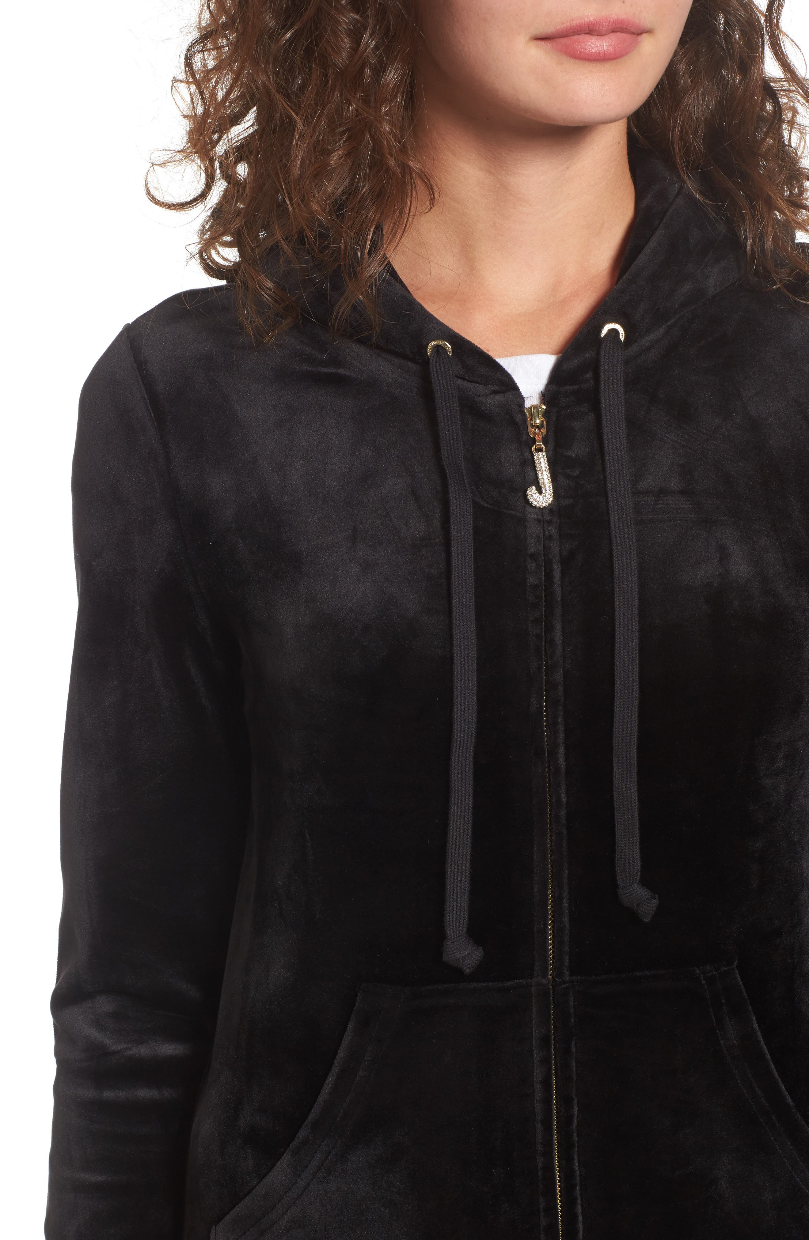 Robertson Ultra Luxe Velour Zip Hoodie,                             Alternate thumbnail 4, color,                             009