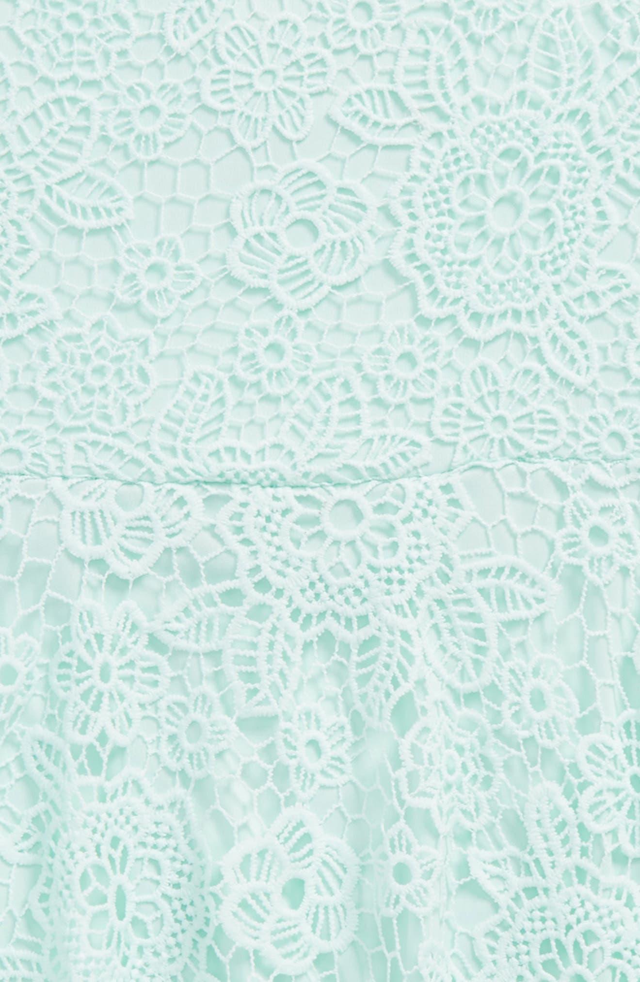 Crochet Skater Dress,                             Alternate thumbnail 3, color,                             331
