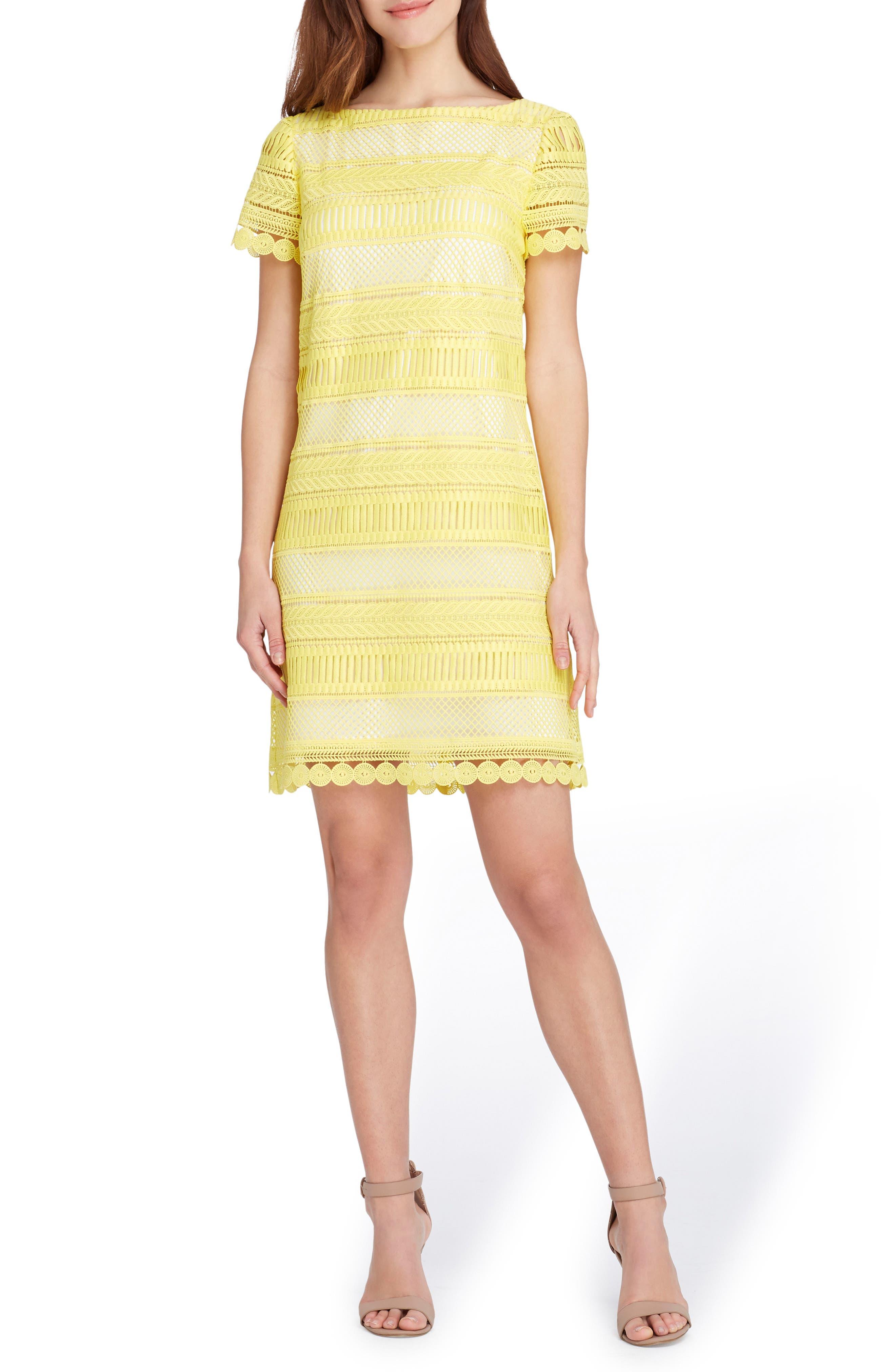 Stripe Lace Sheath Dress,                             Main thumbnail 1, color,
