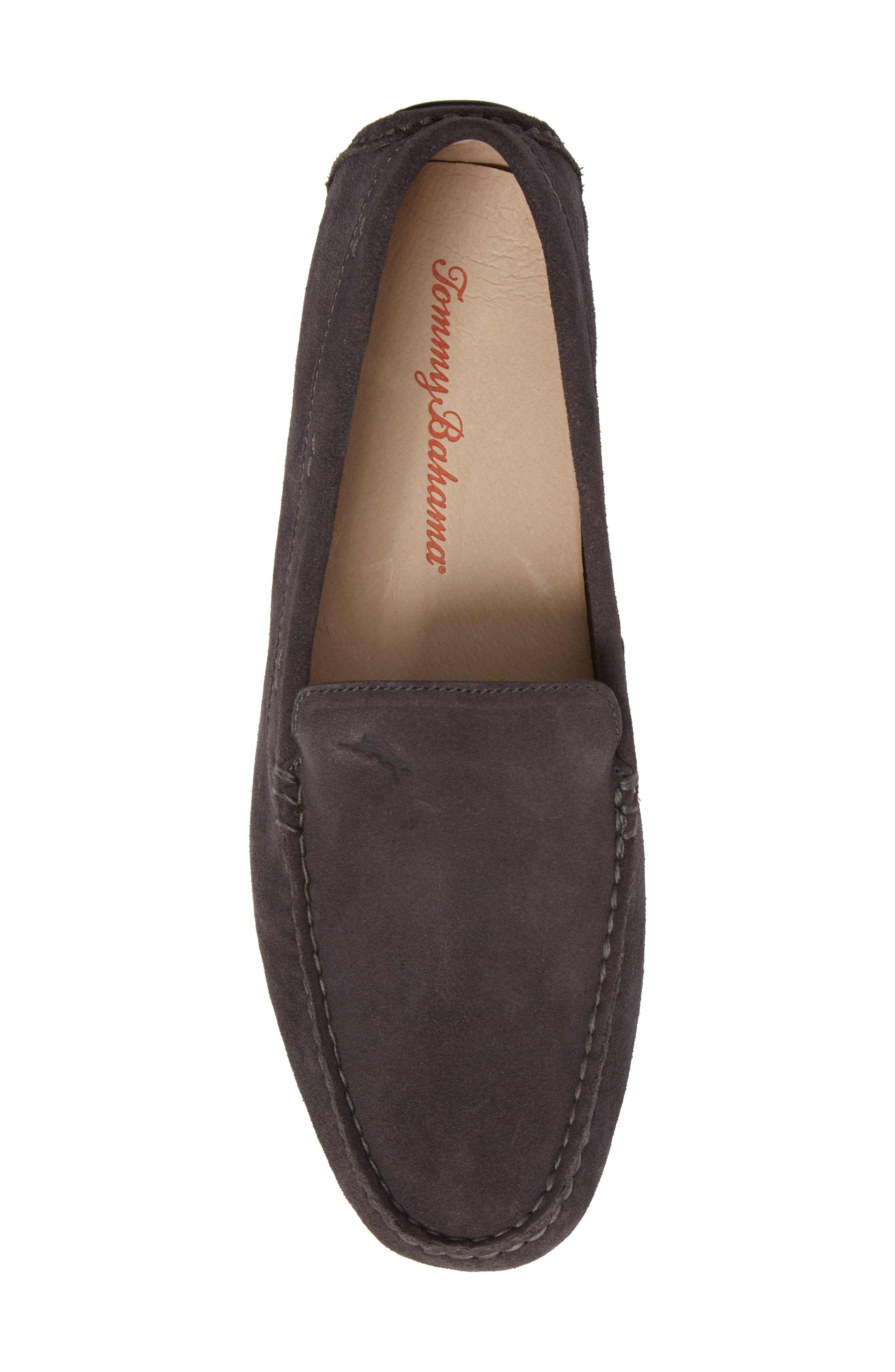 Pagota Driving Loafer,                             Alternate thumbnail 25, color,
