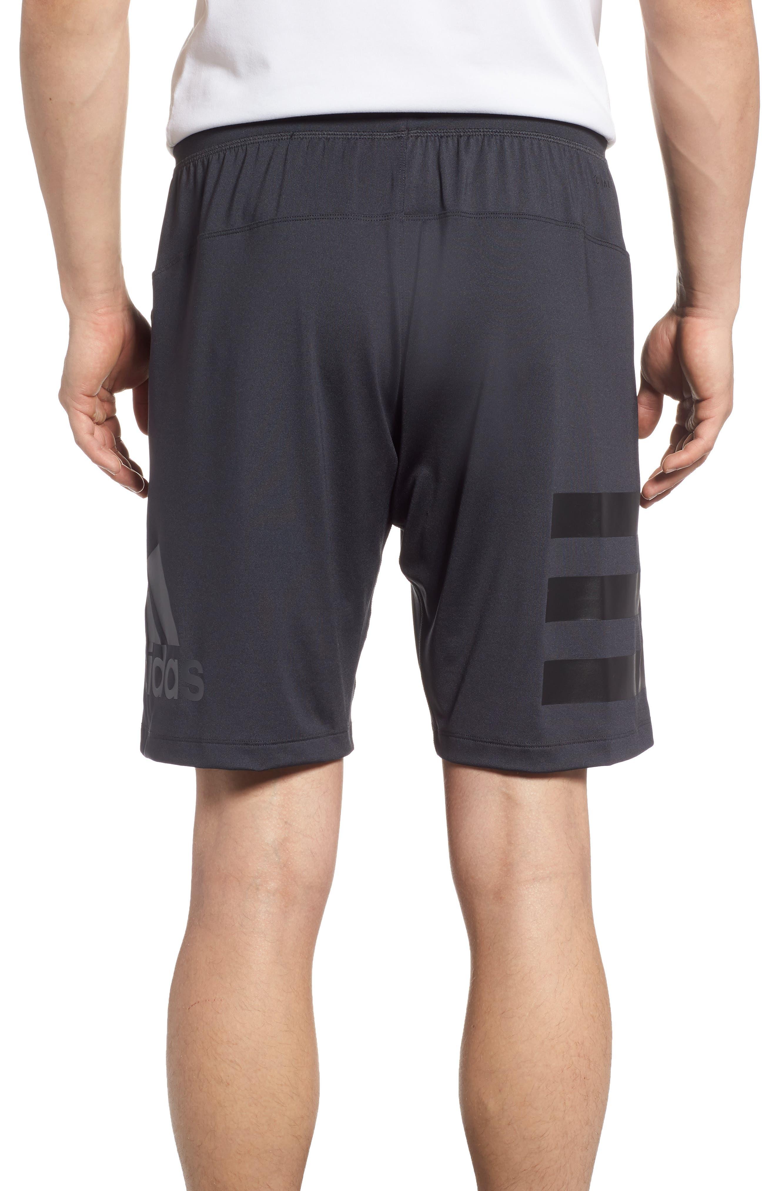 SB Hype Icon Shorts,                             Alternate thumbnail 2, color,                             CARBON/ BLACK