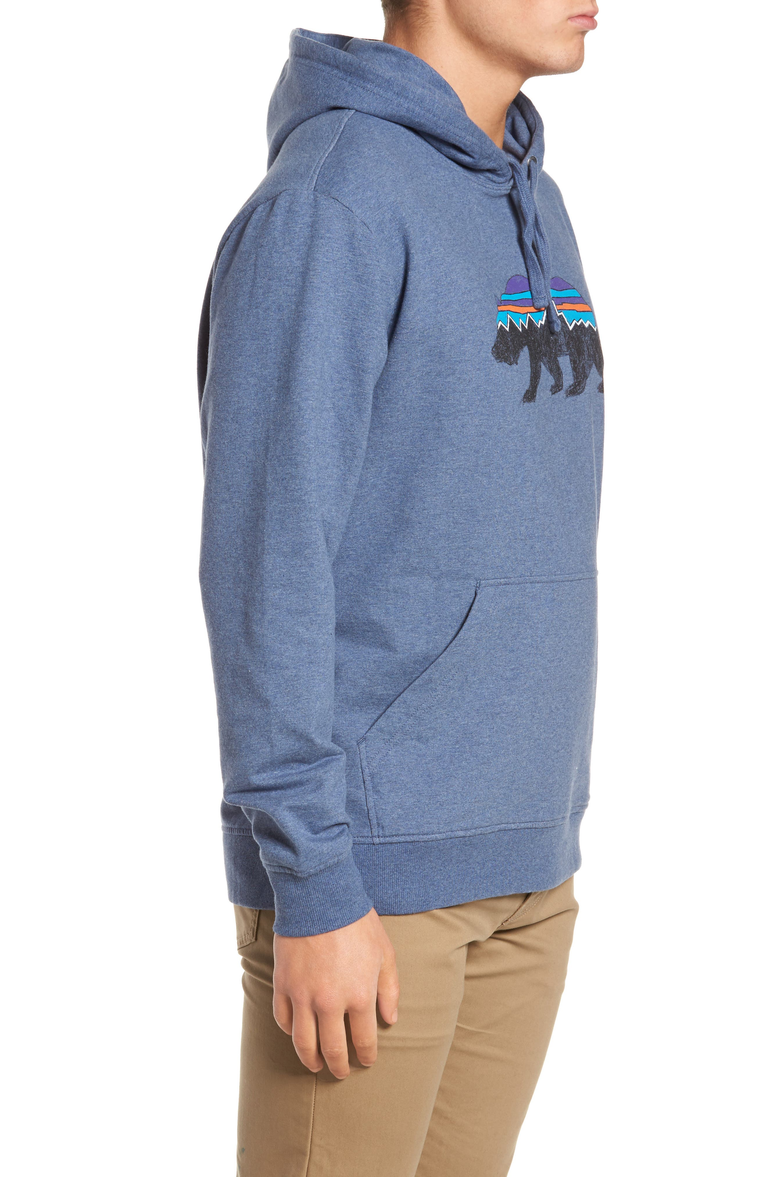 Fitz Roy Bear Graphic Hoodie,                             Alternate thumbnail 12, color,