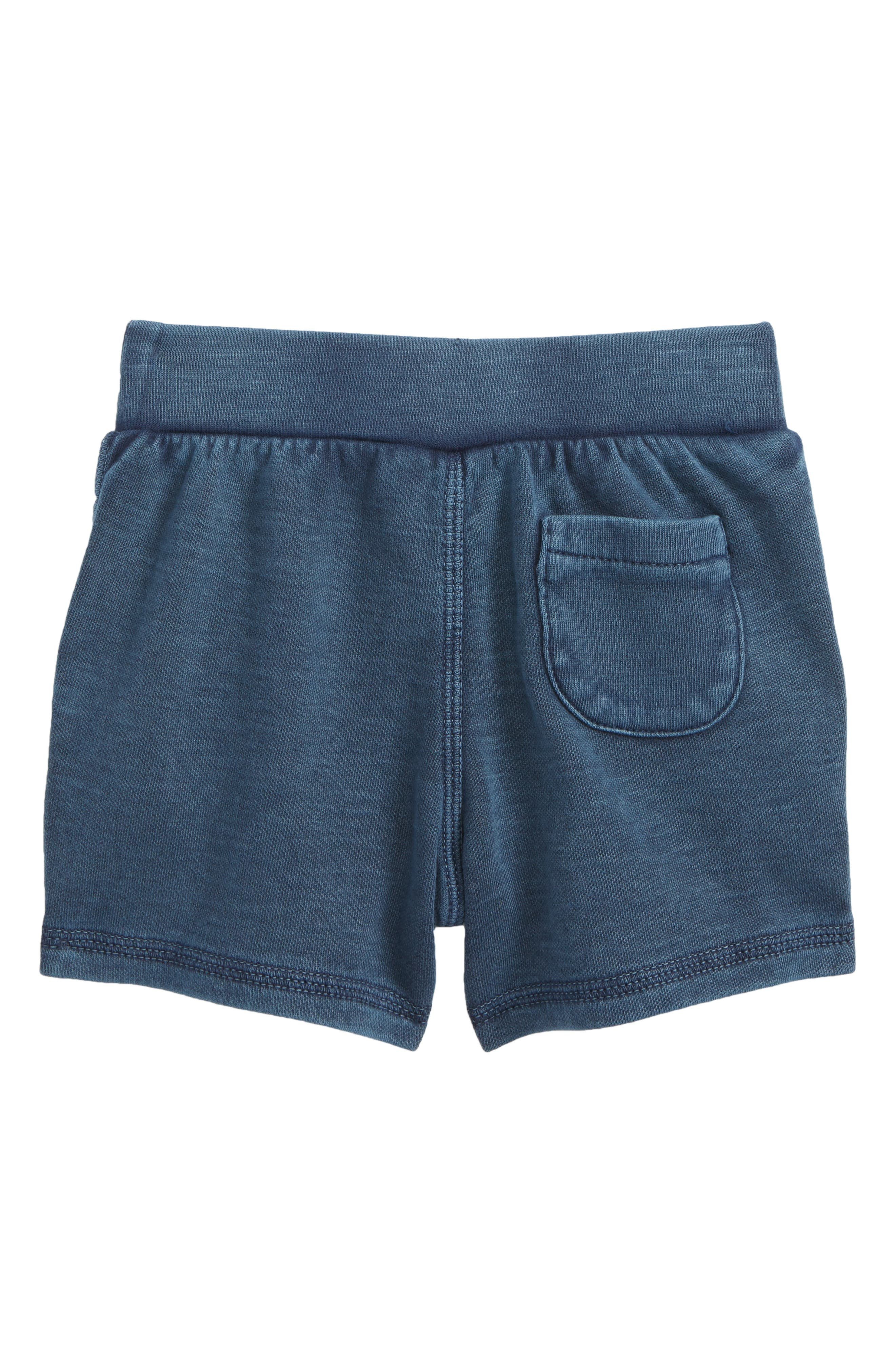 Knit Shorts,                             Alternate thumbnail 2, color,                             410