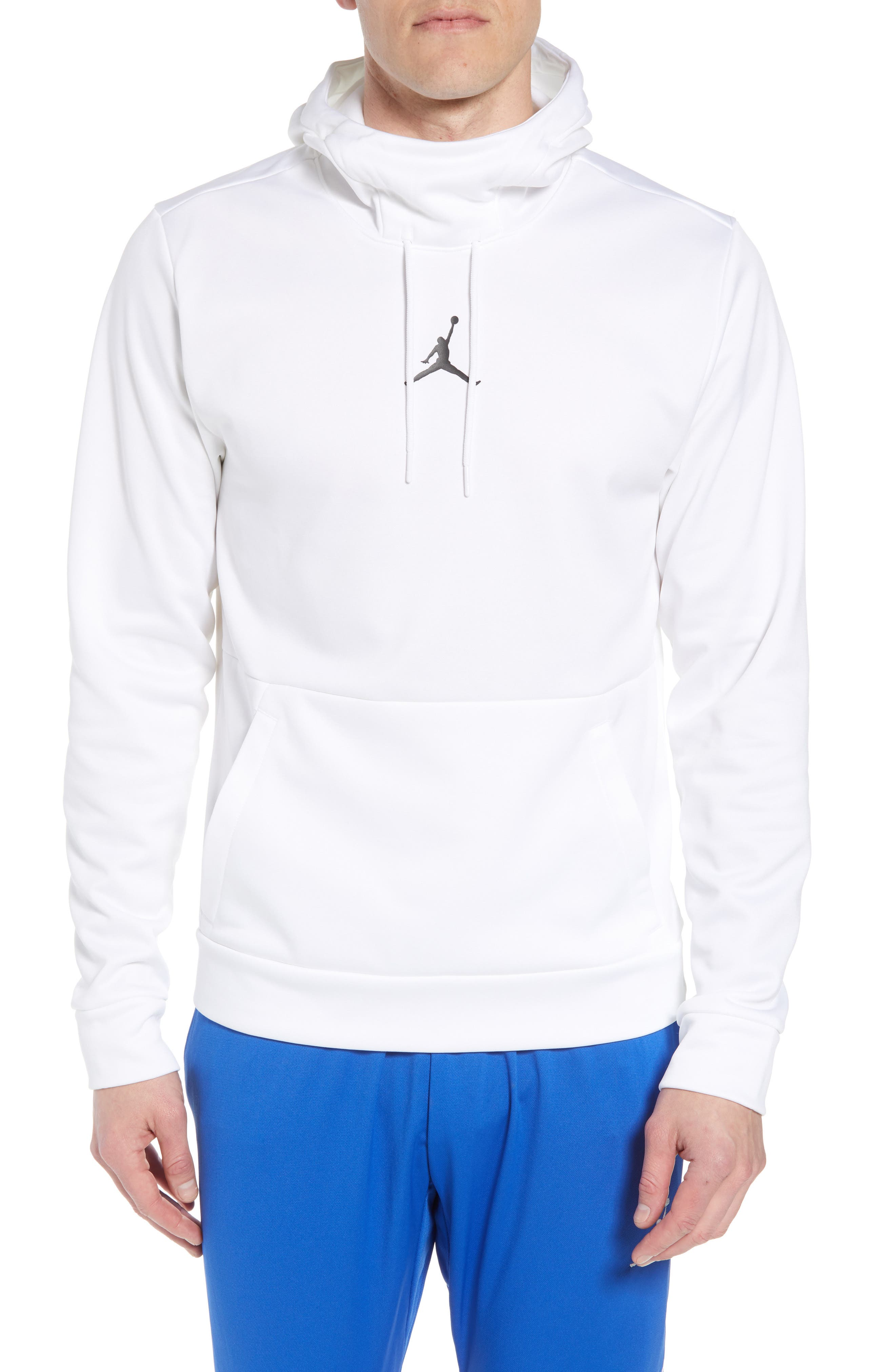 23 Alpha Training Hoodie,                         Main,                         color, 100