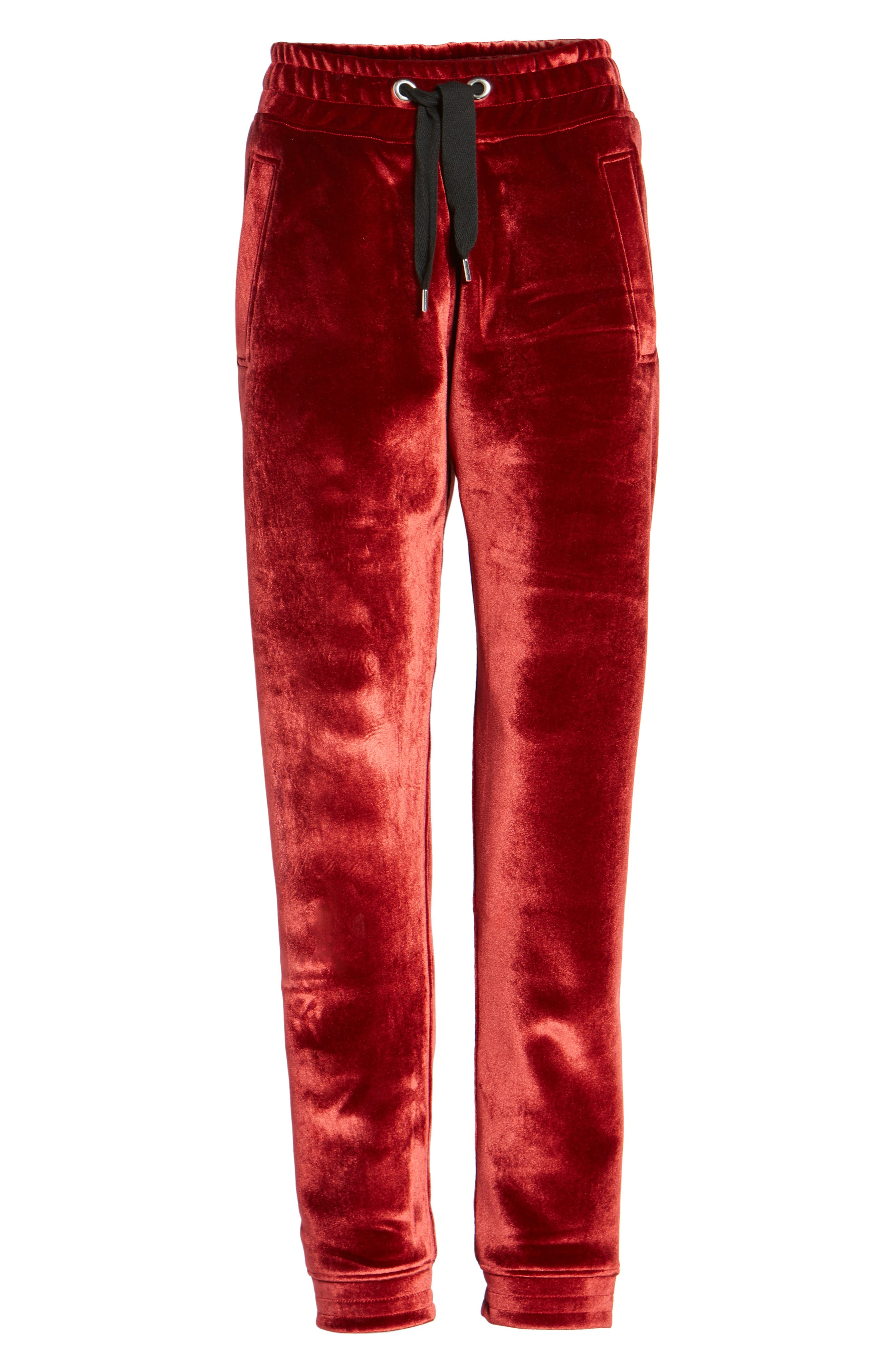 Velvet Jogger Pants,                             Alternate thumbnail 7, color,                             600